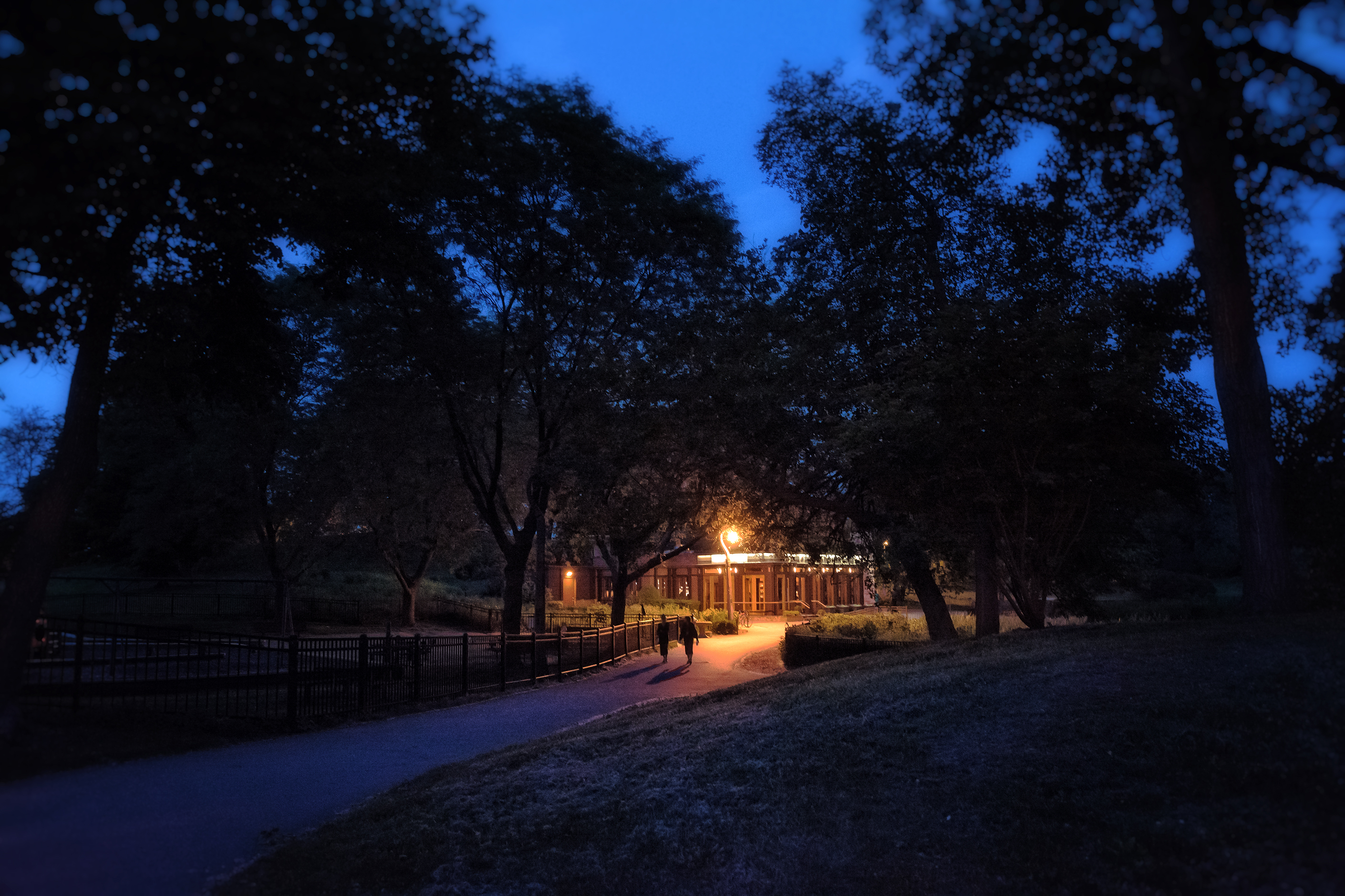 A single park streetlight with an orange glow in Chicago at night.