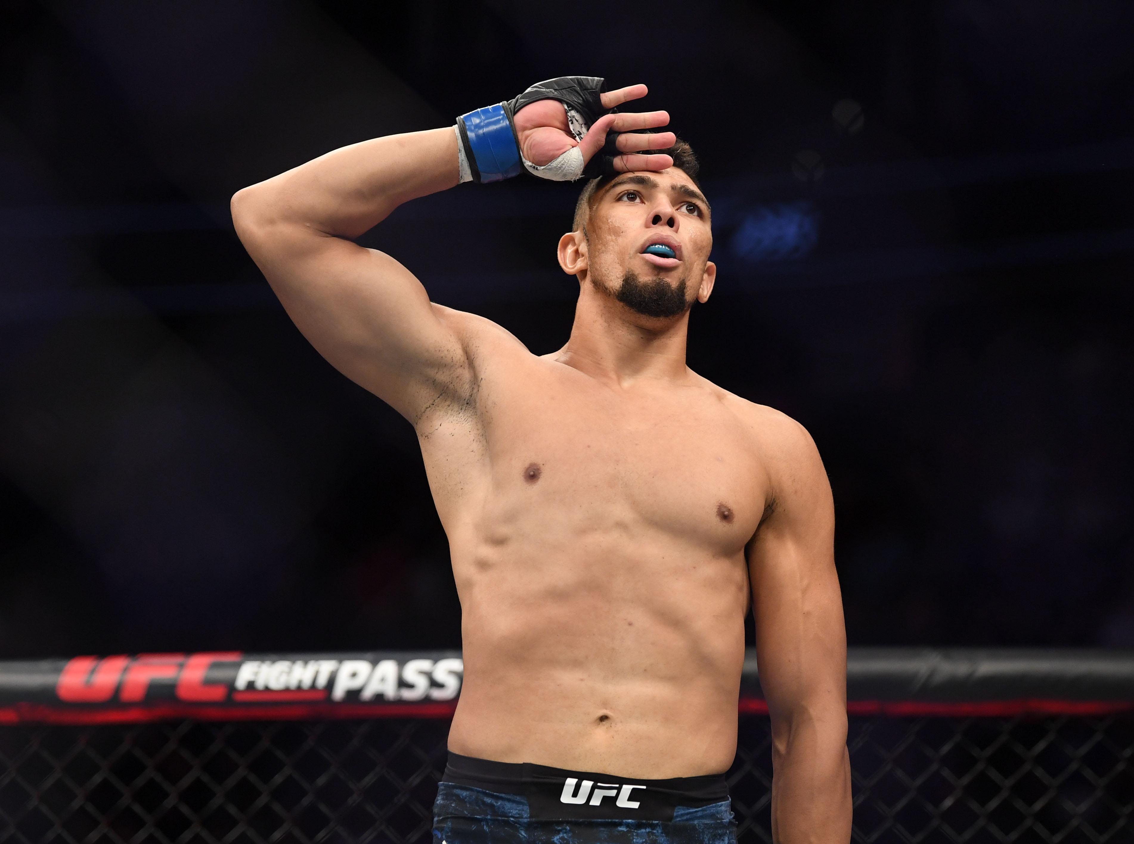 MMA: UFC 235-Cirkunov vs Walker