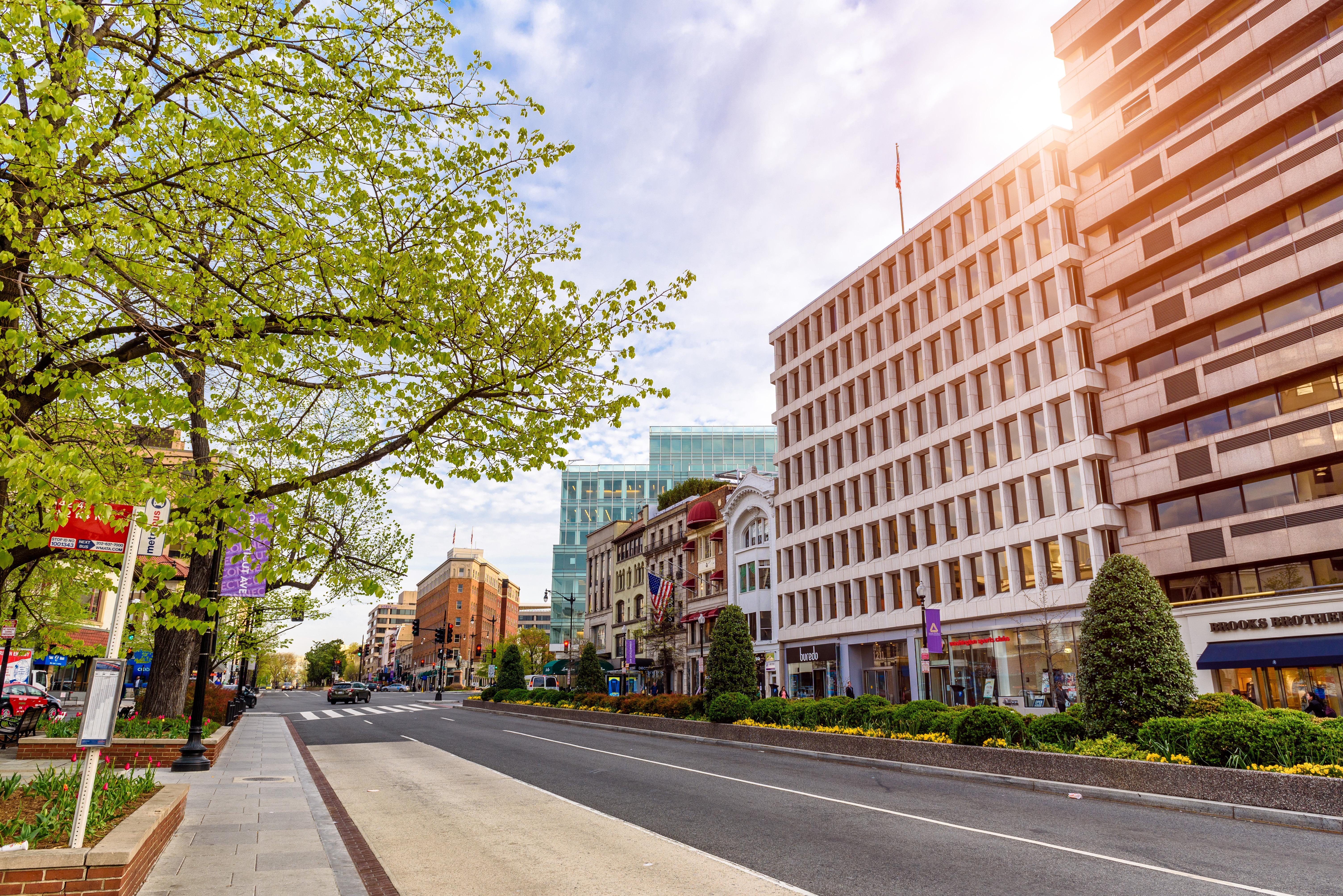 Heralding spring, haiku signs pop up across part of Northwest D.C.