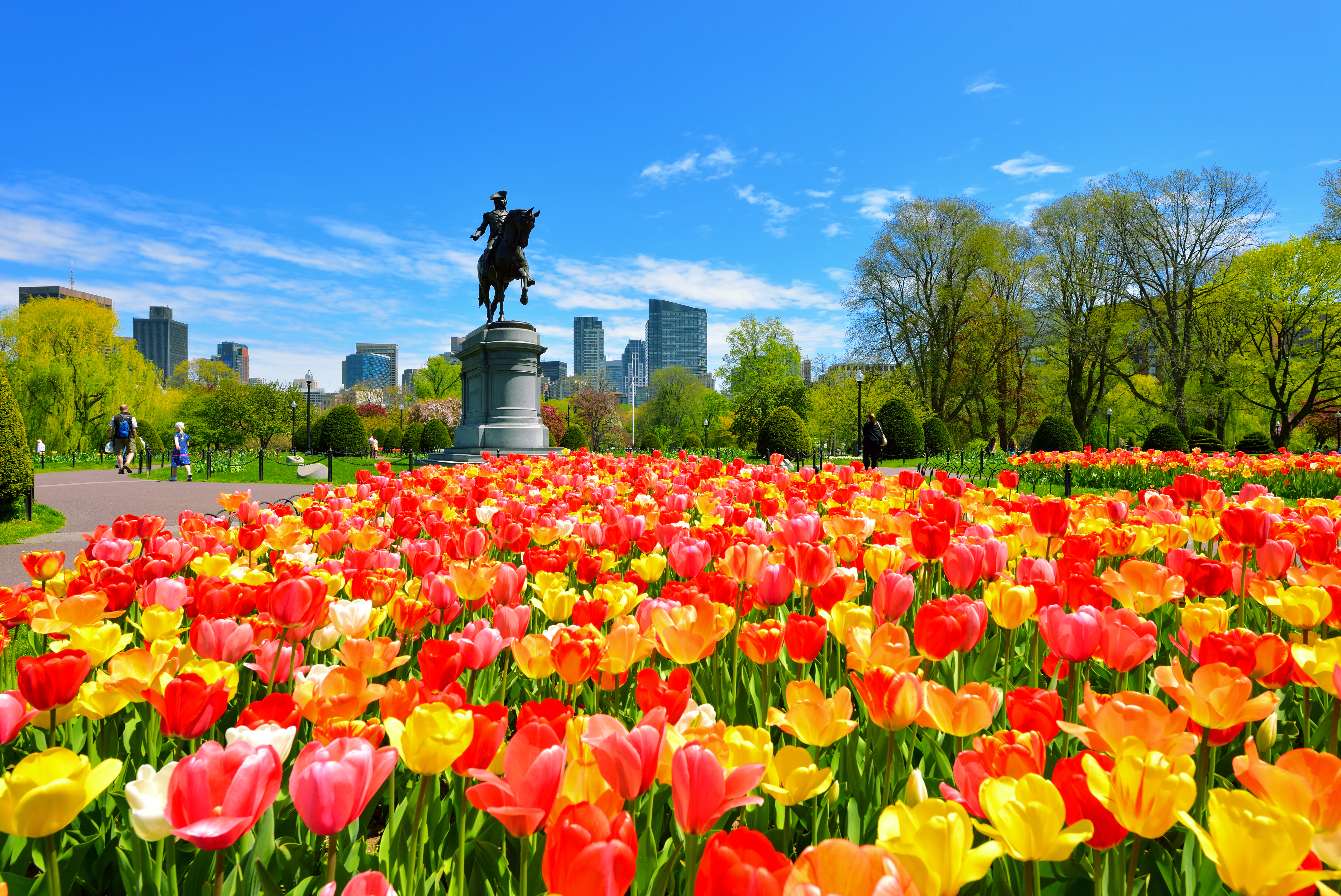 Boston's most Instagrammable locations in the spring