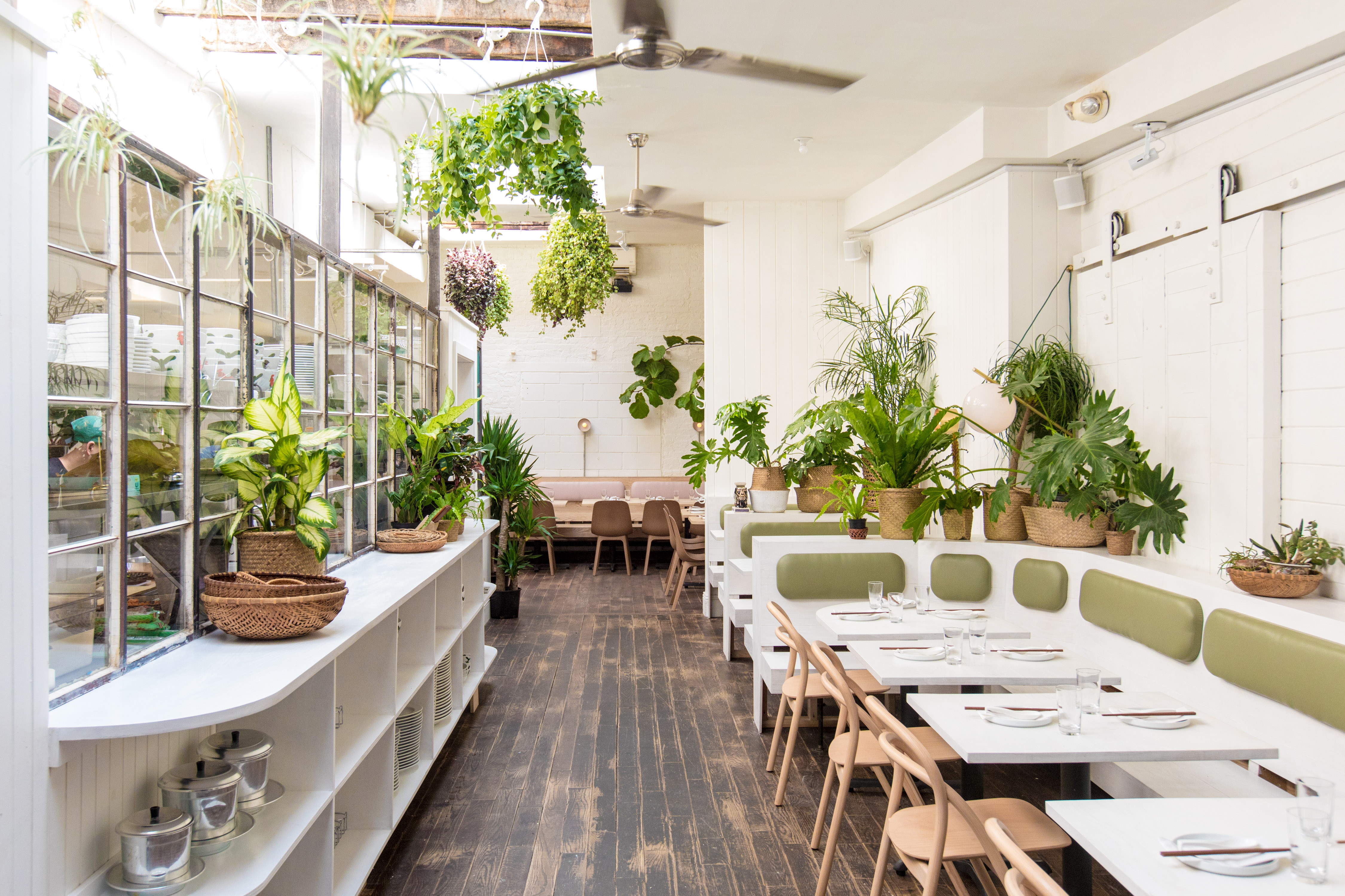 A dining room filled with plants and white tables and walls
