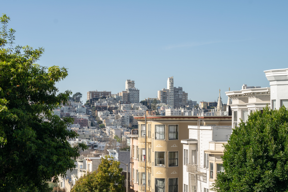 A view of the SF skyline from Telegraph Hill.
