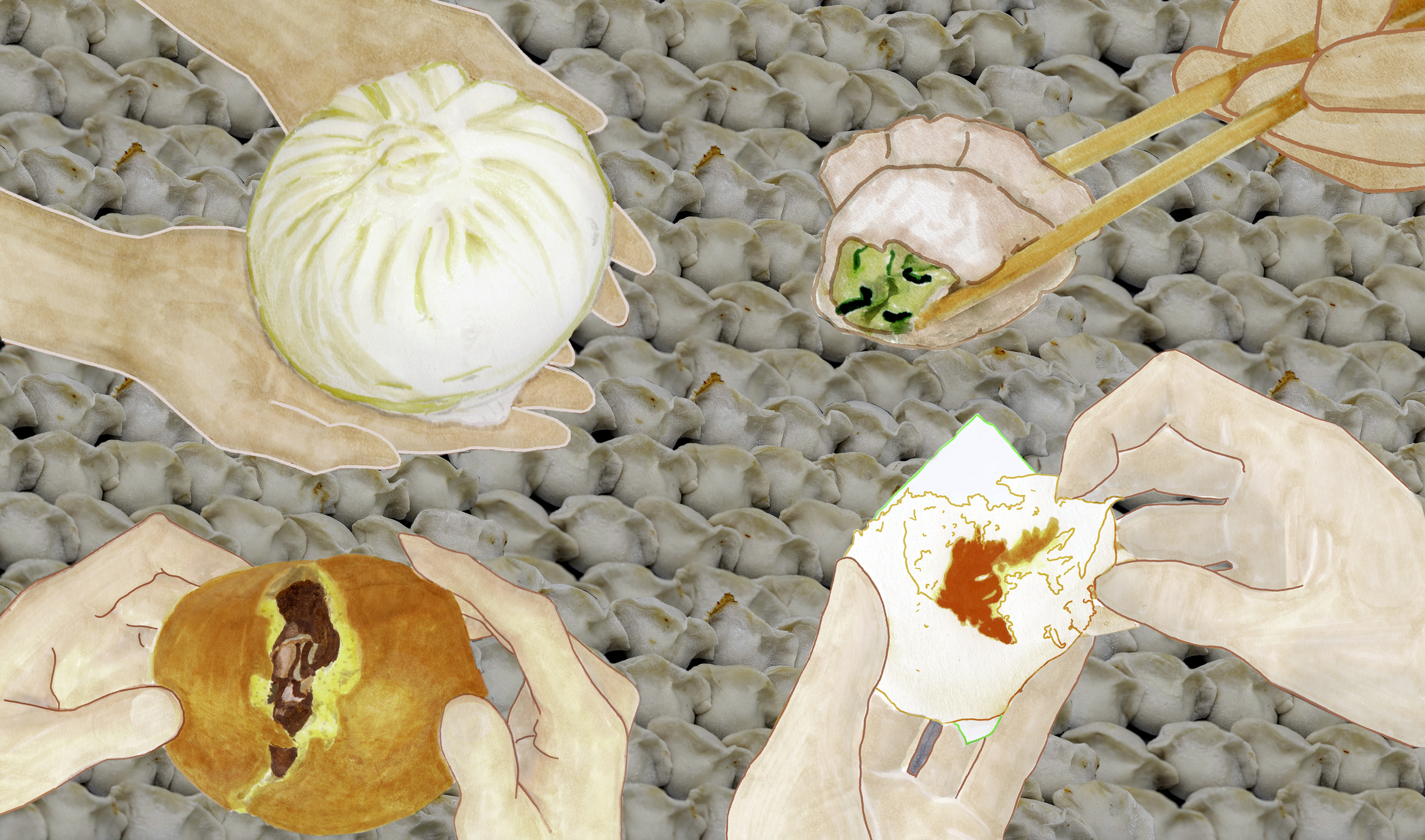 A multicultural assortment of dumplings