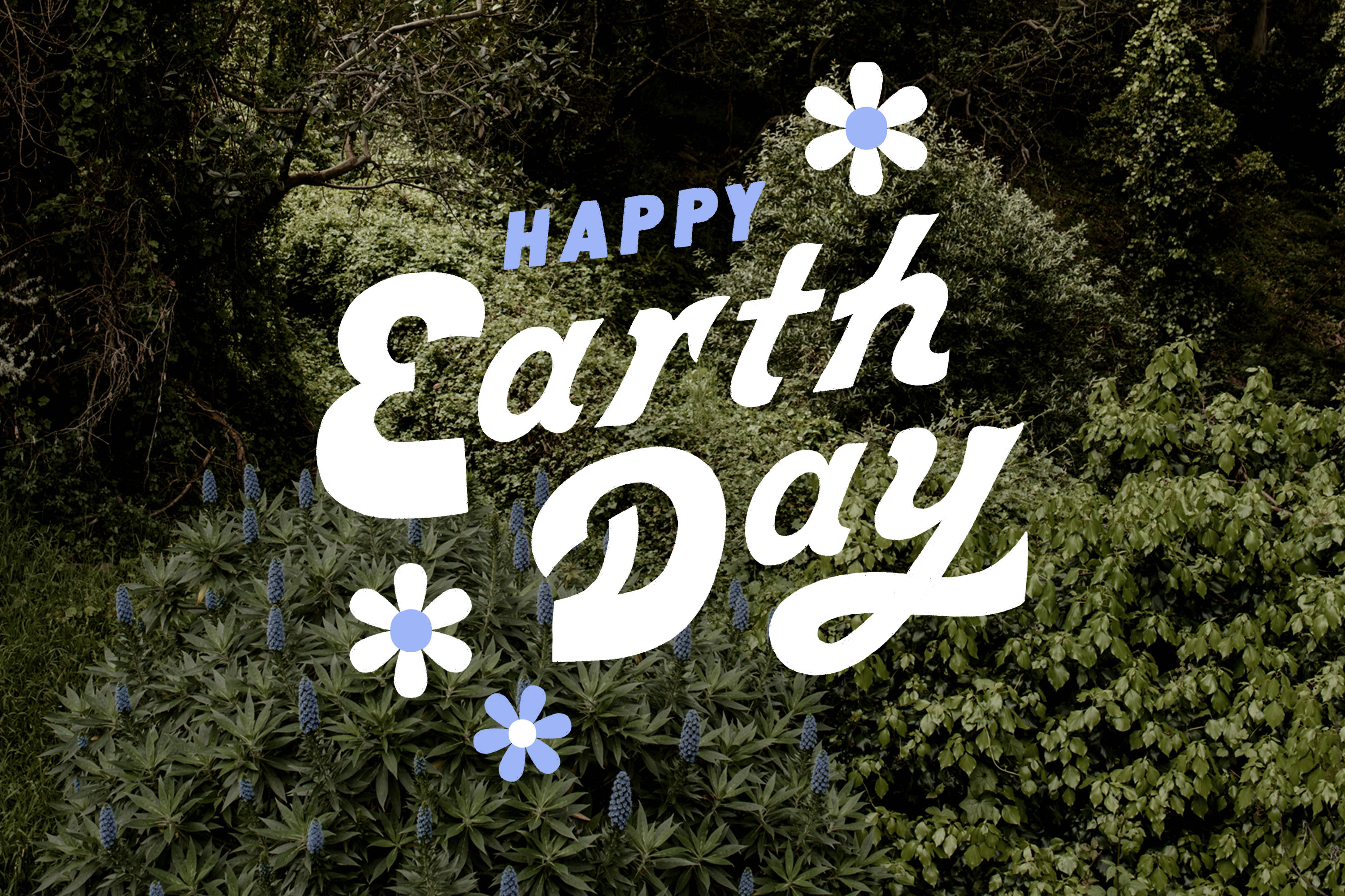 Best Earth Day 2019 activities in San Francisco