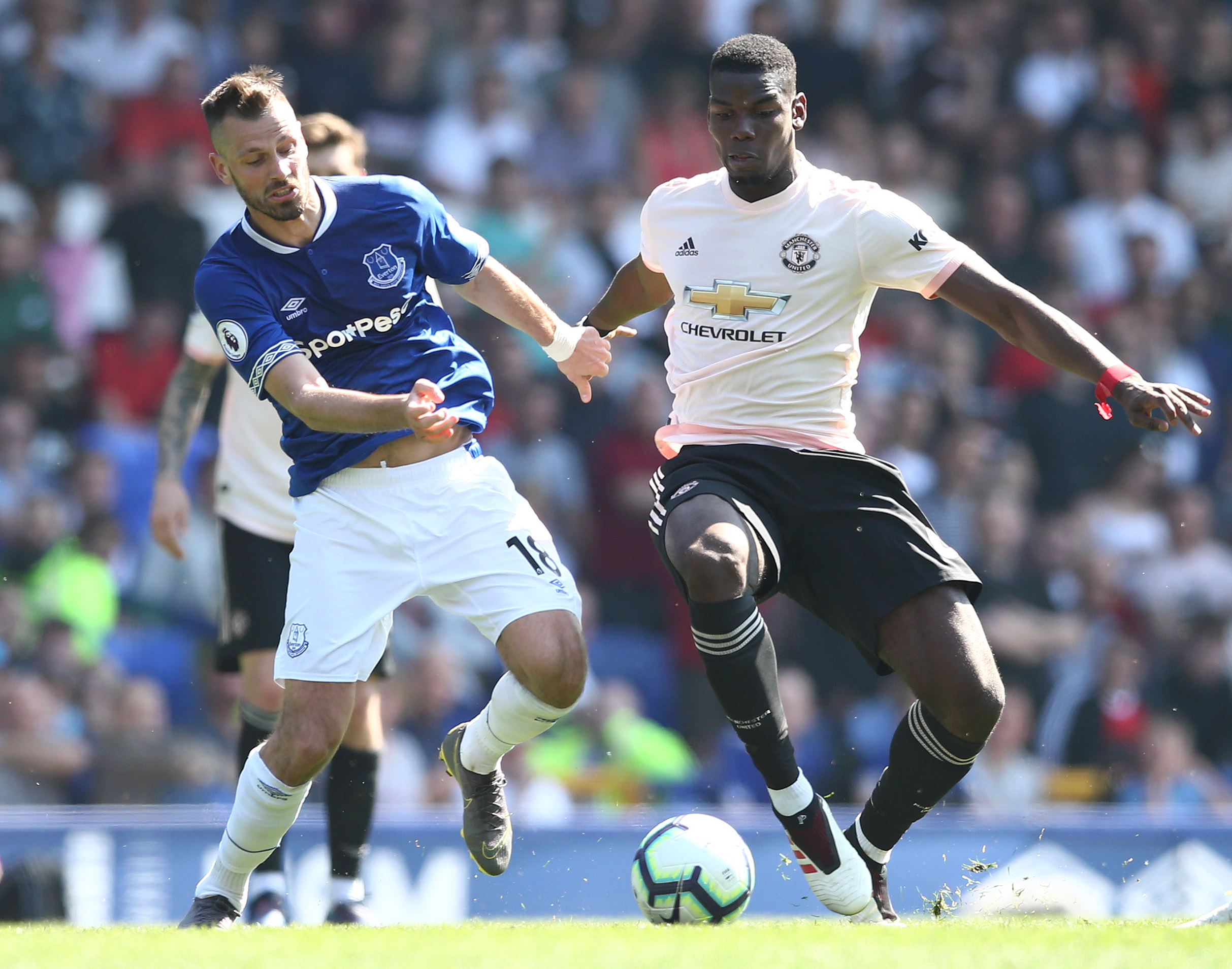 Morgan Schneiderlin should have a place in Everton's future