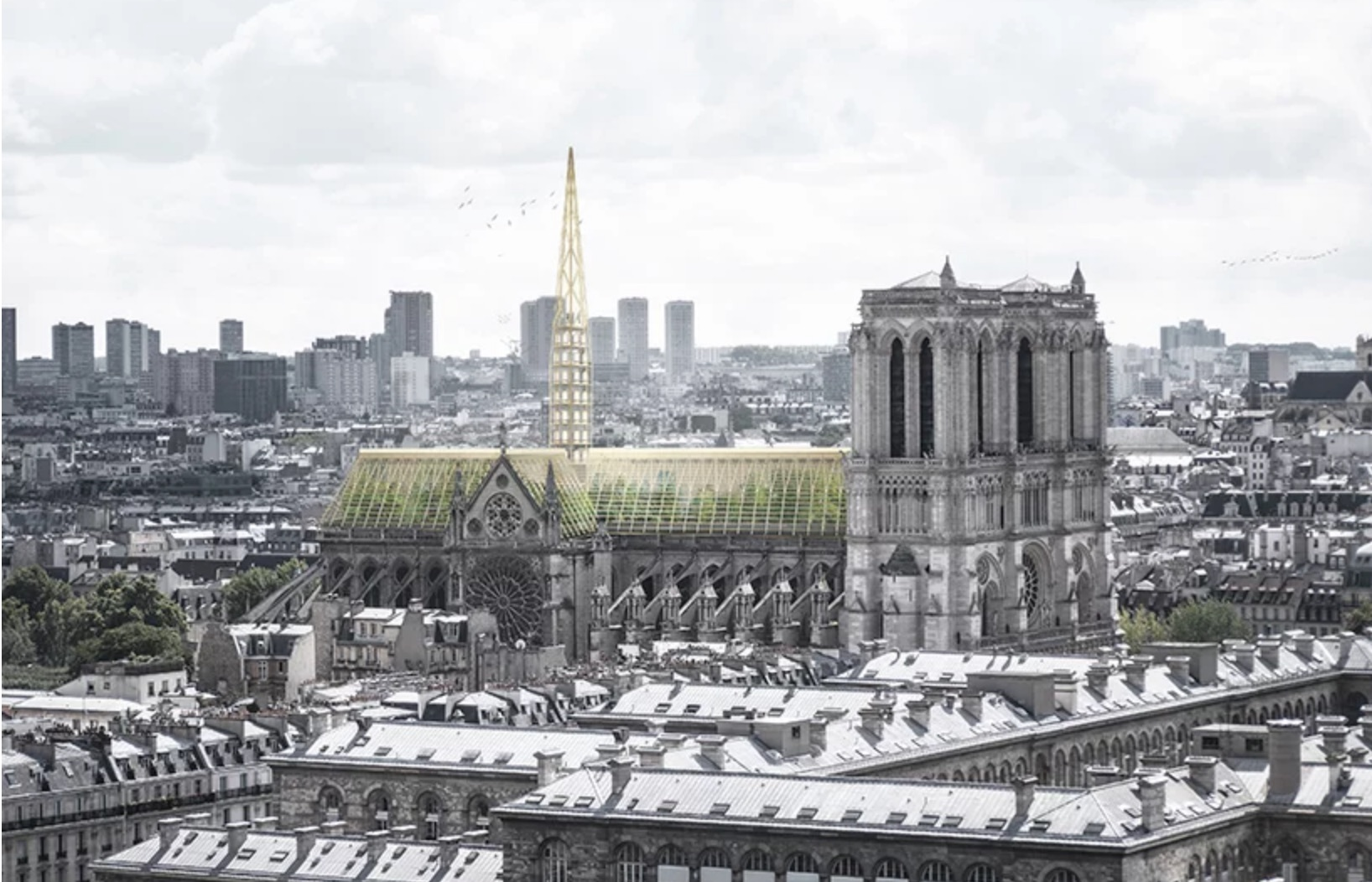 Notre Dame roof reimagined as a giant greenhouse