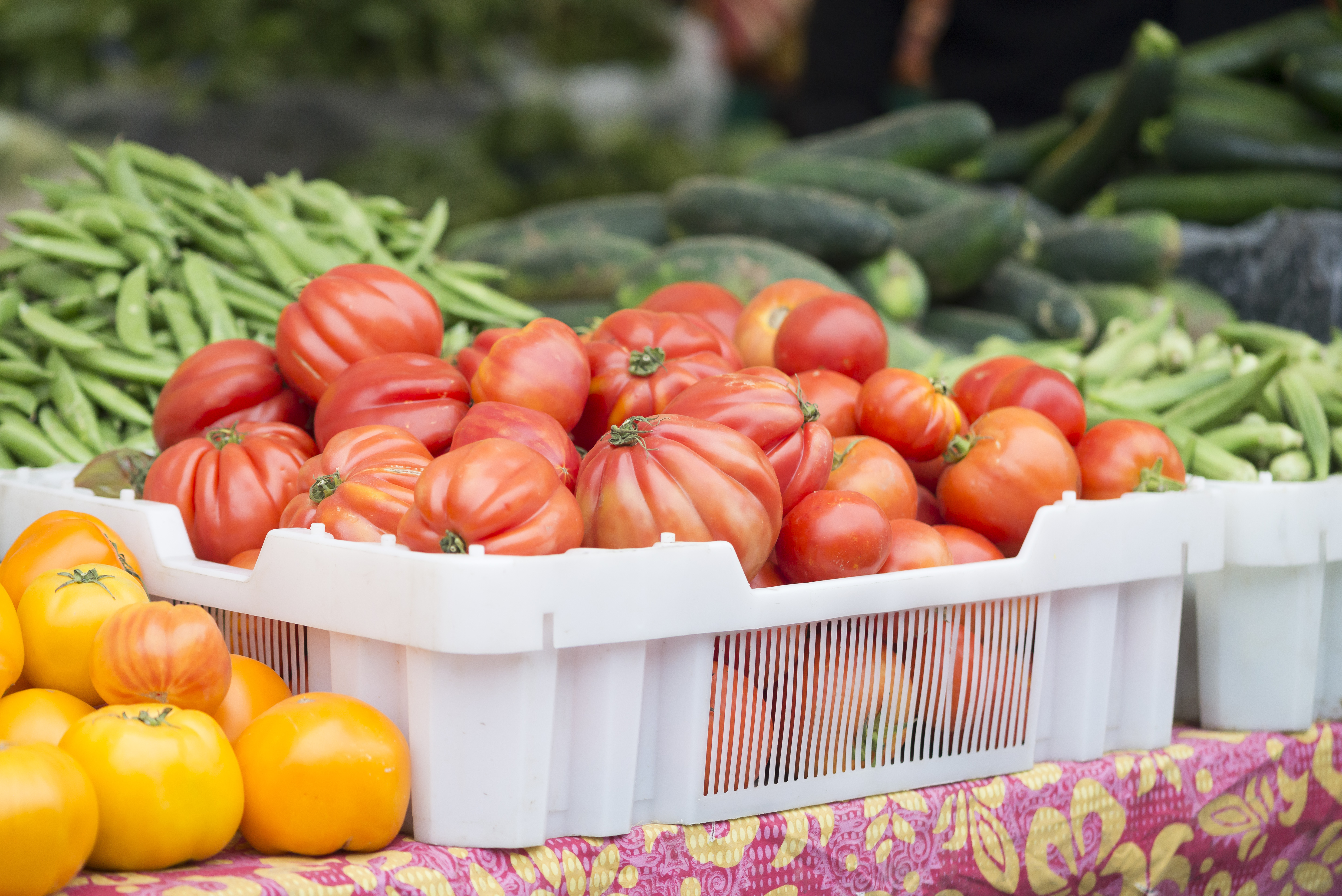 Chicago farmers markets 2019 schedule and locations - Curbed