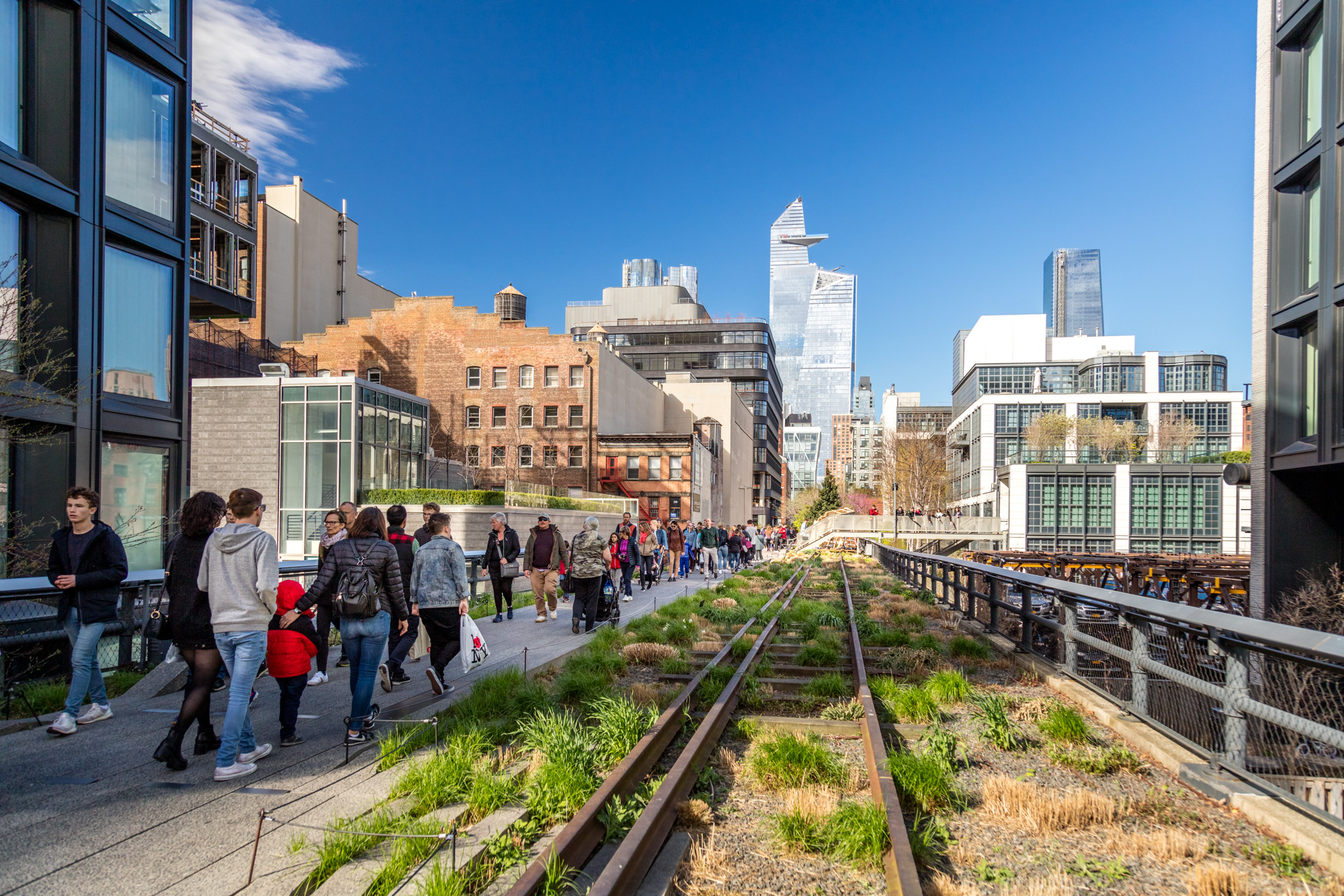 People walk along a path that is next to train tracks which have plants and grass growing between the tracks. There are city buildings in the distance.