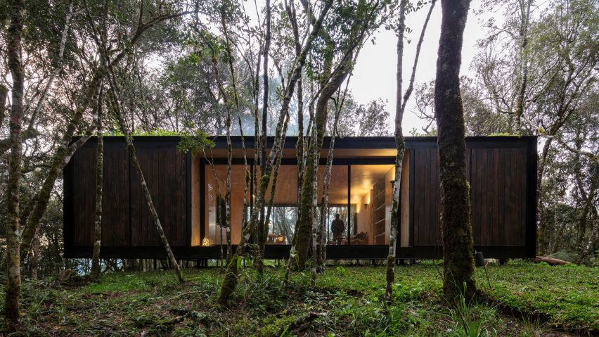 Minimalist prefab home blends into forest with dark exterior and green roof