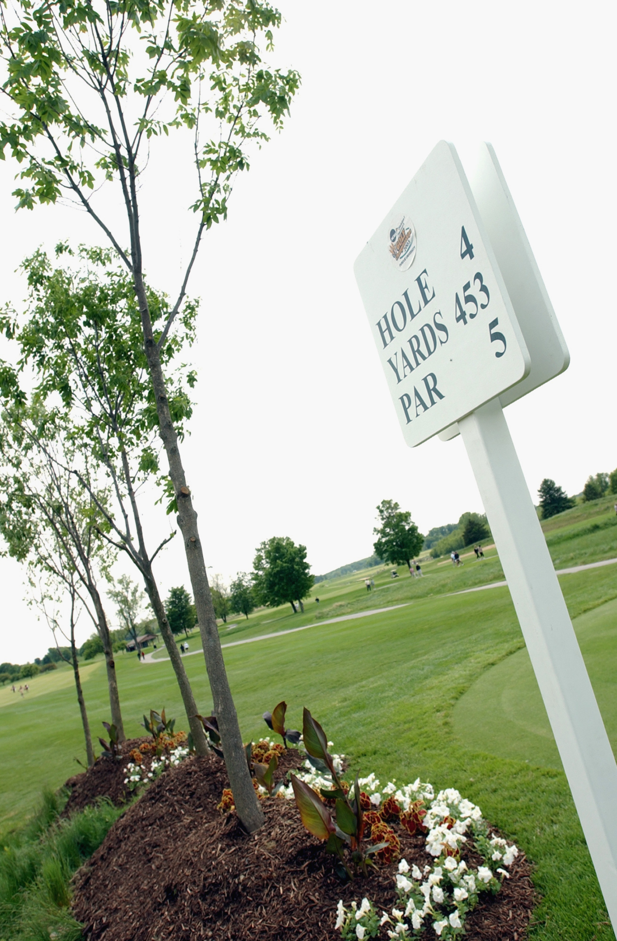 Trees planted along fourth tee box