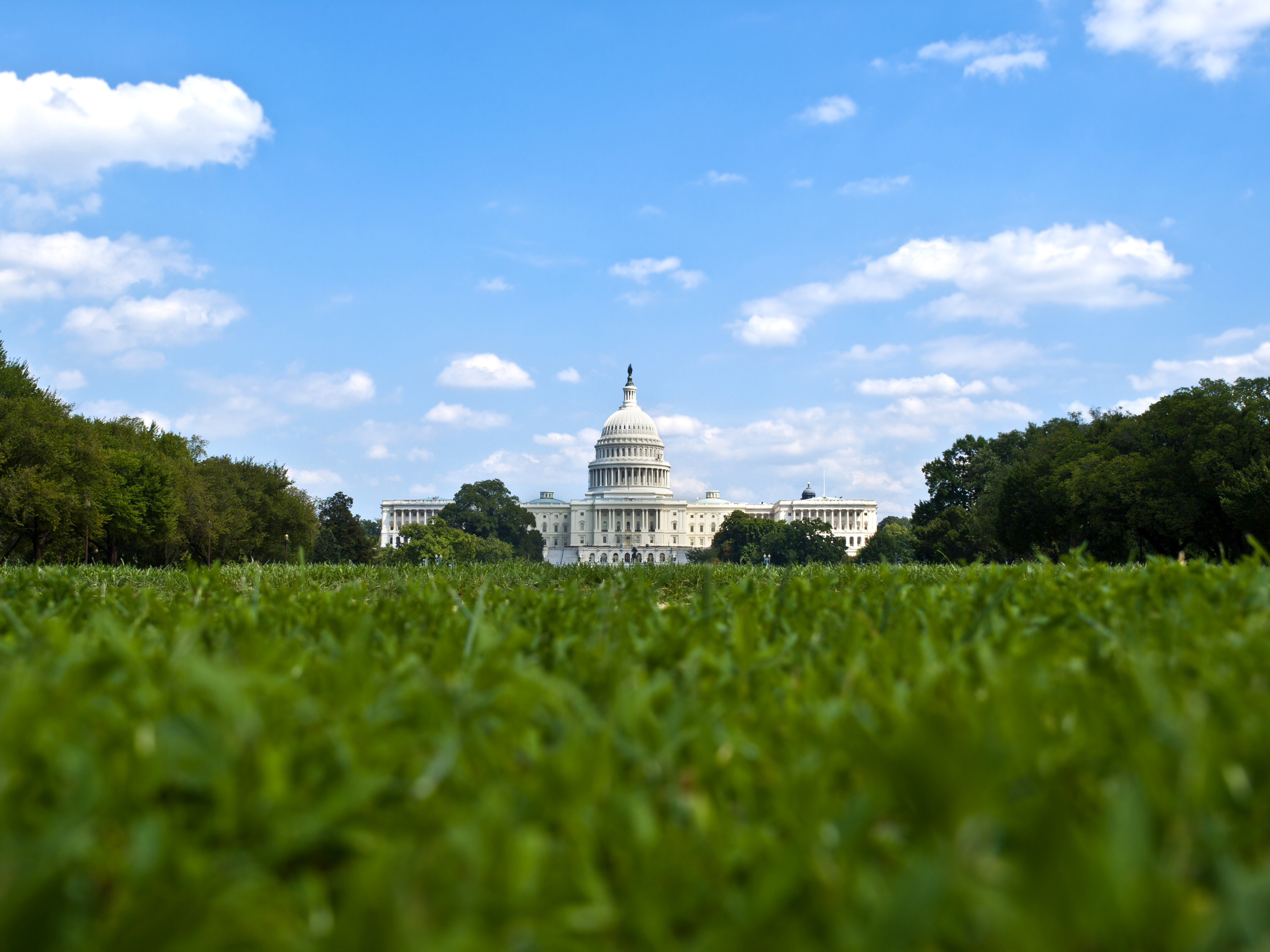 D.C. residents could soon meet regularly with Park Service officials: congressional delegate