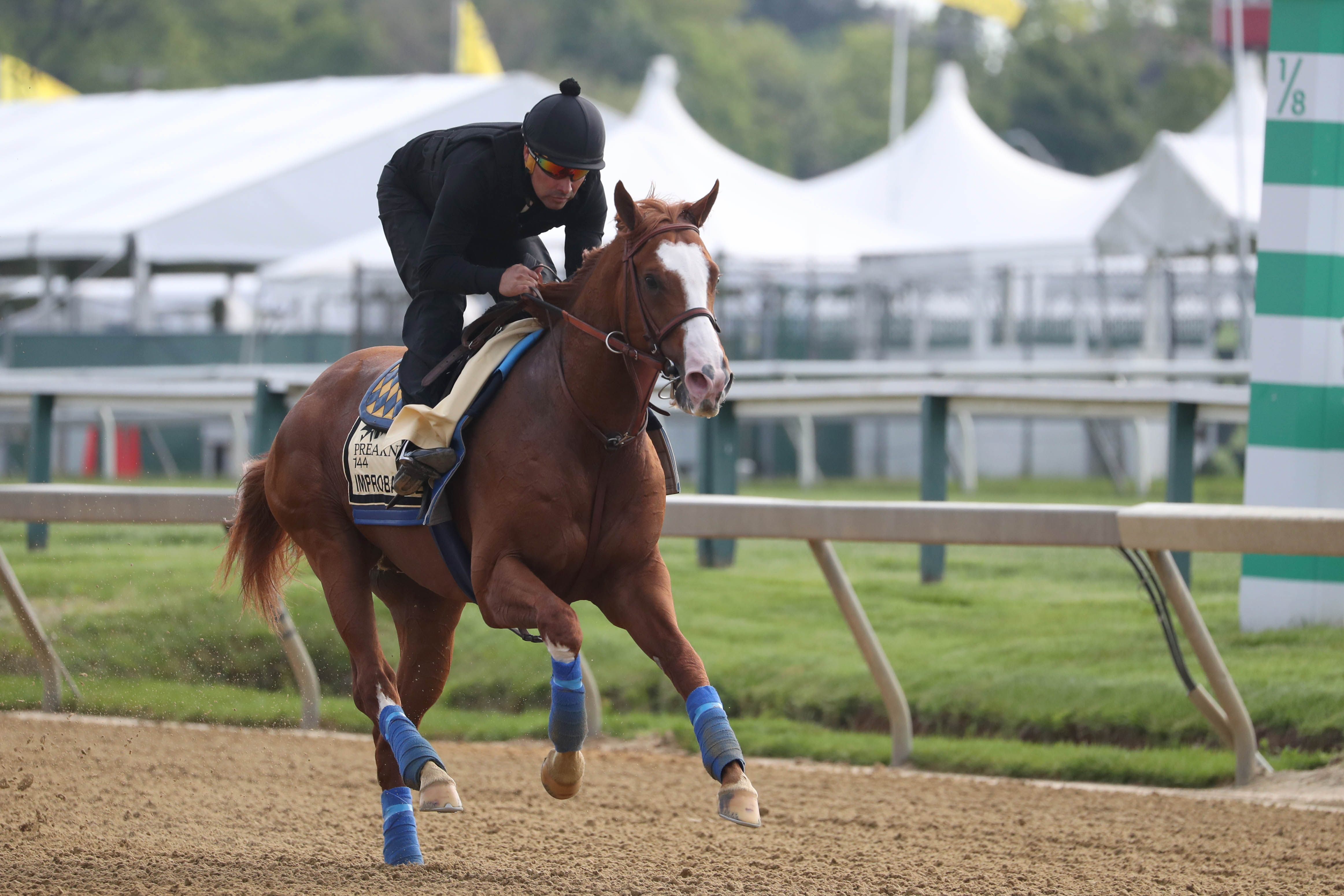 Betting lines and trends roundup for 2019 Preakness Stakes