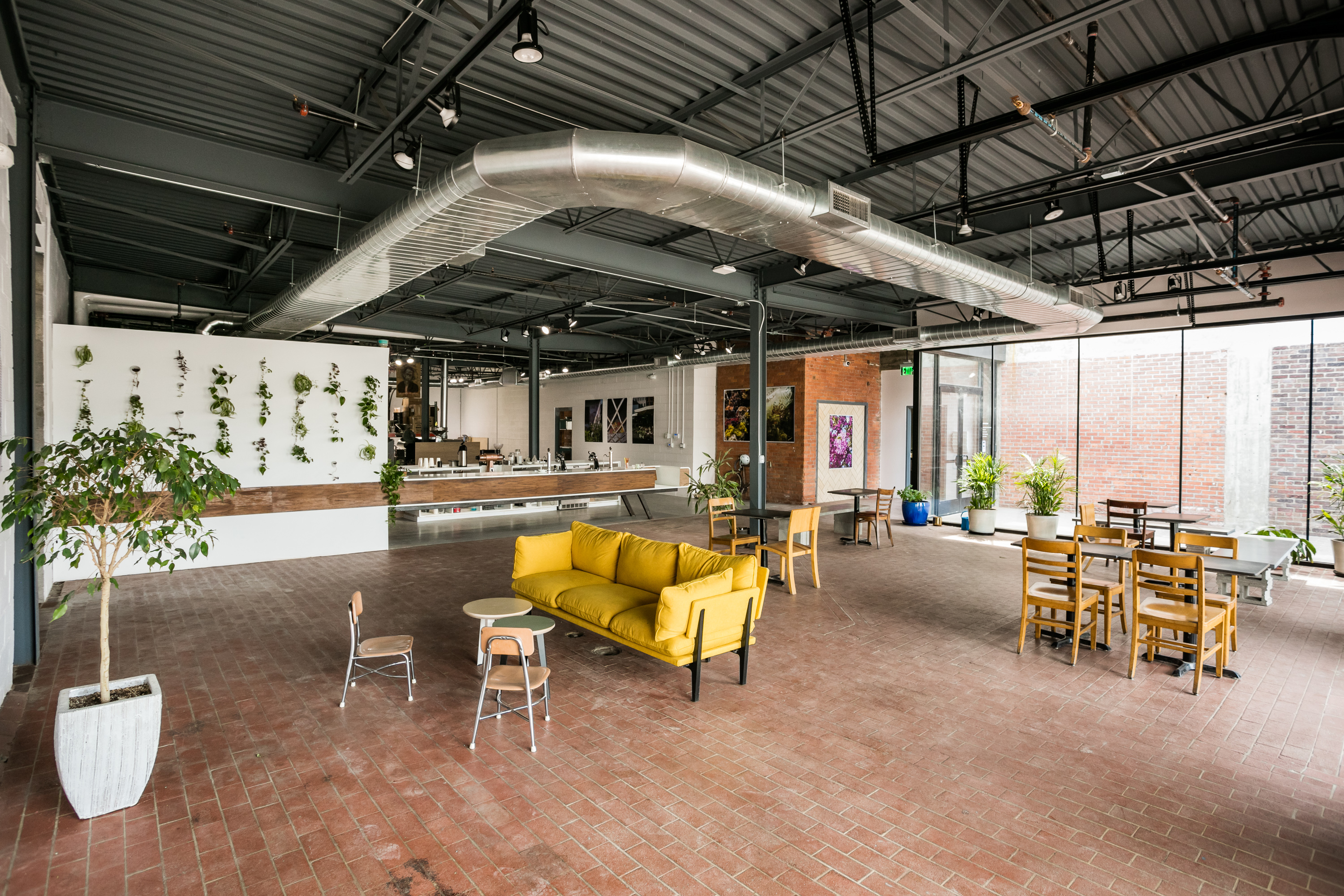 A yellow couch sits in the middle of the industrial space at Anthology Coffee. The room has large windows, plants, and brick floors.