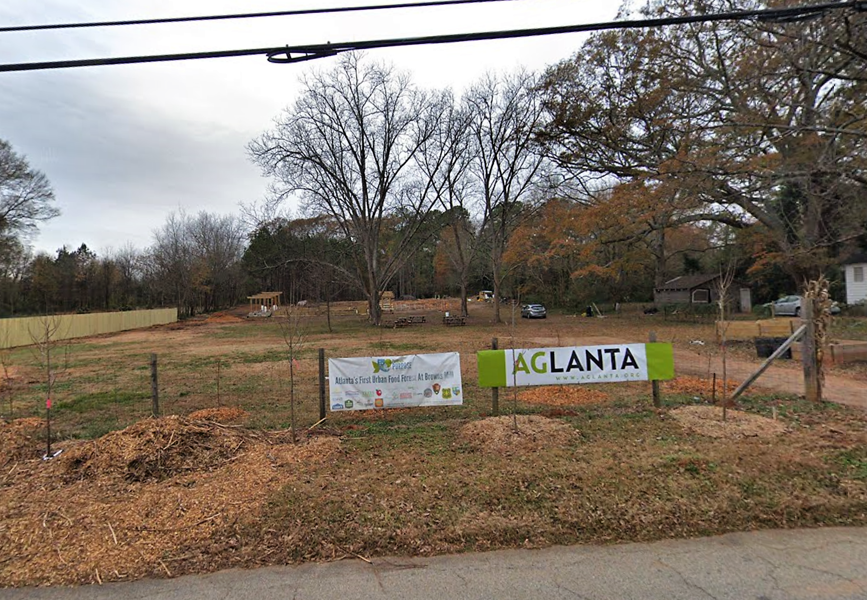 Seven acres of vacant Atlanta land to become nation's largest public food forest