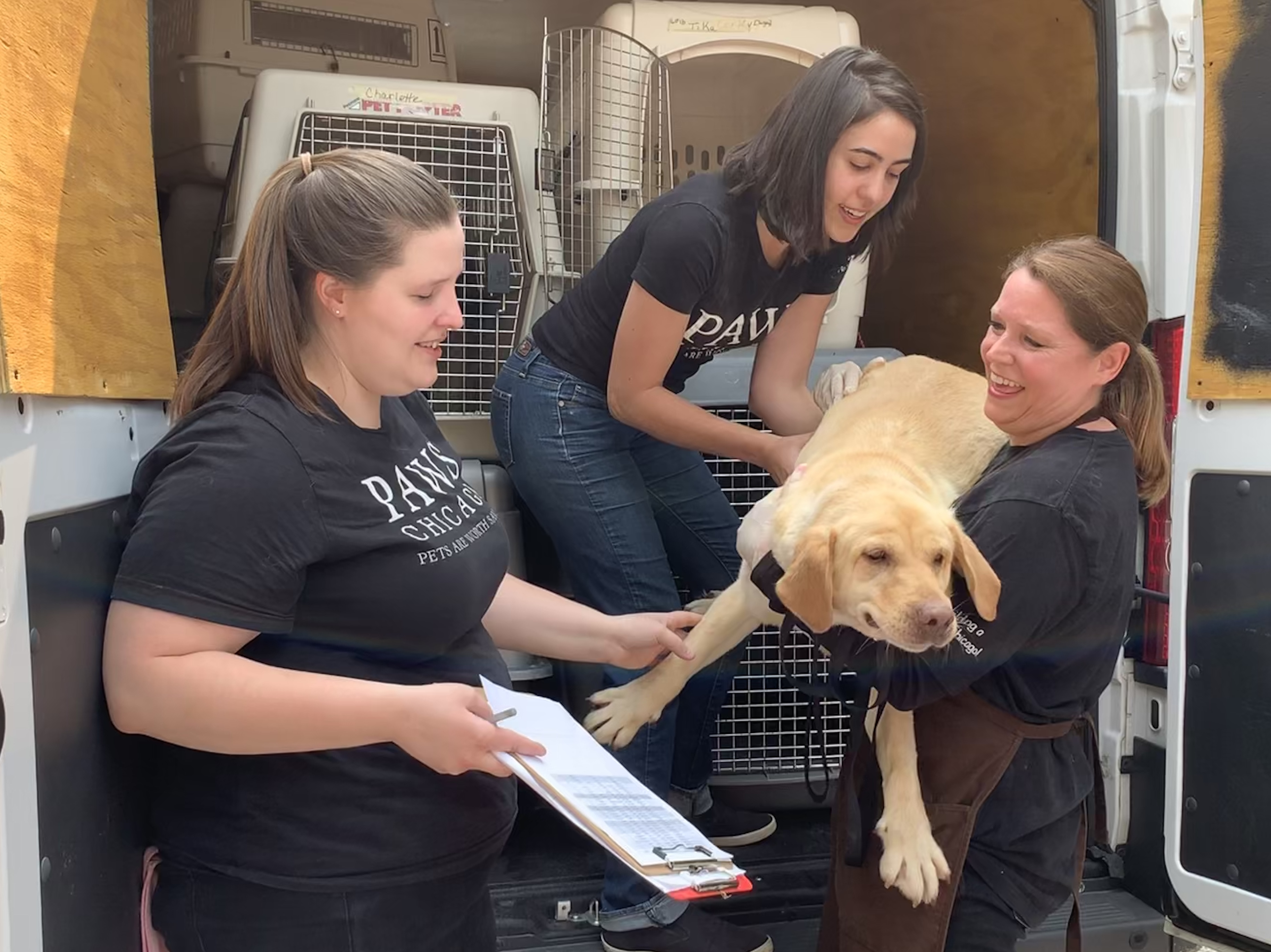 PAWS Chicago volunteers unload two rescue vans and bring the homeless animals to the group's medical center for treatment.