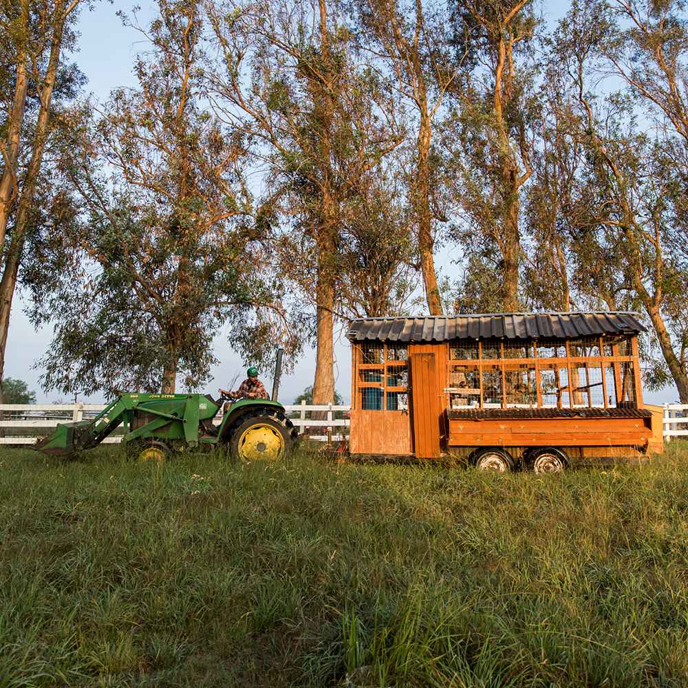 When two Angelenos buy a farm—they make a must-see documentary about it