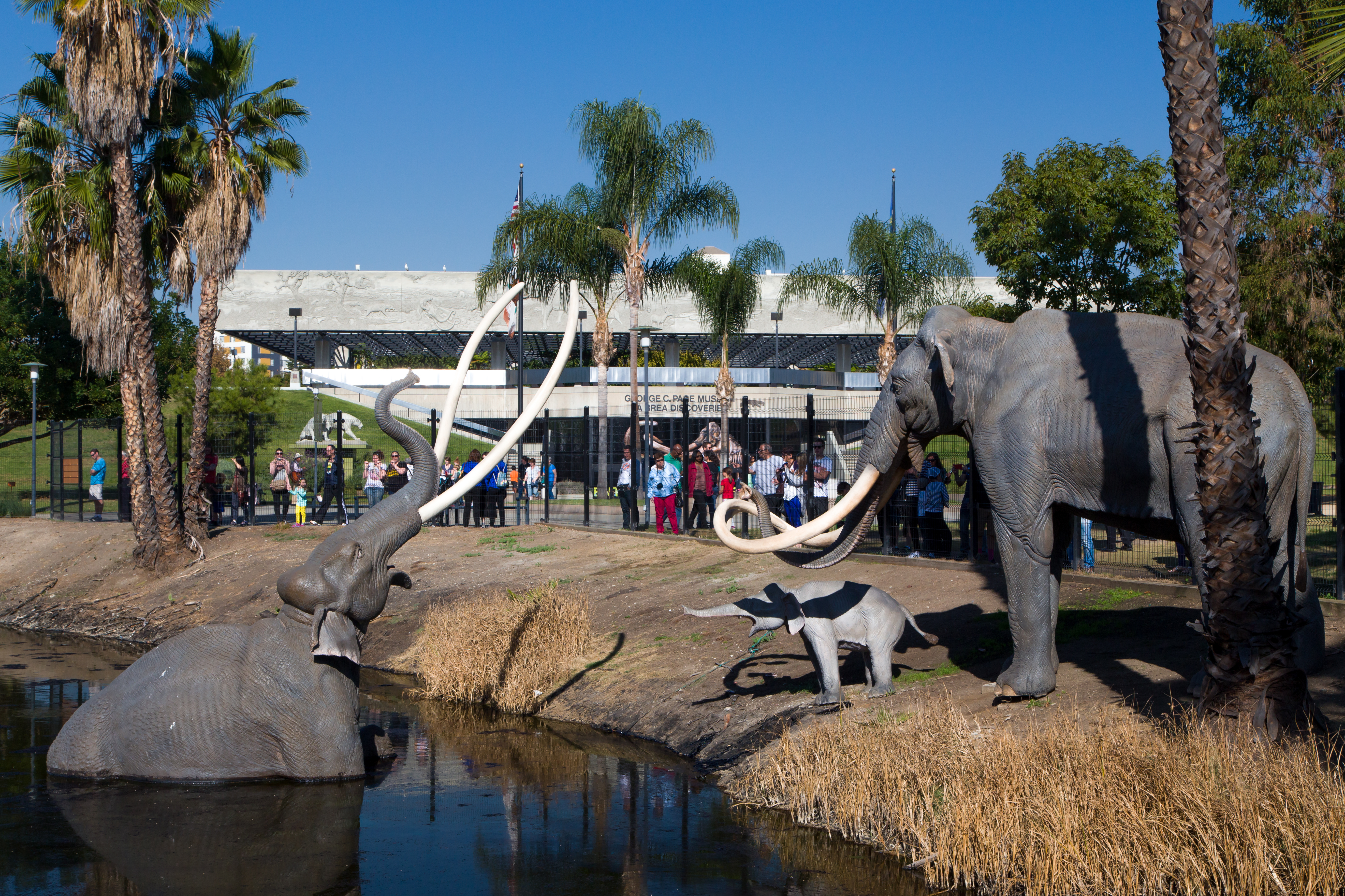 In the foreground is a body of water with sculptures of elephants at the edge. In the distance are palm trees and a large building.