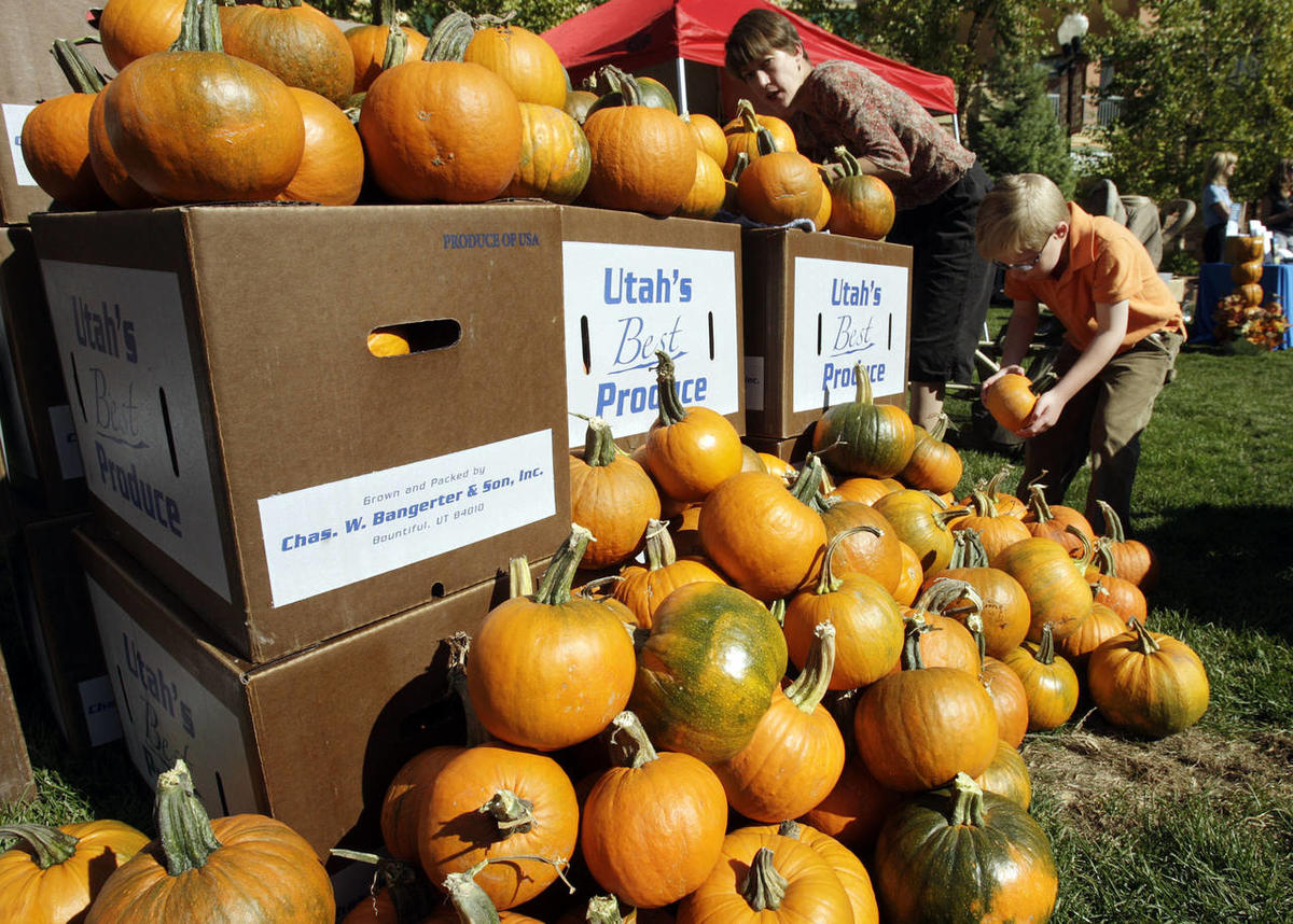 Children pick out pumpkins and paint them at Gateway in Salt Lake City Friday, Oct. 21, 2011.