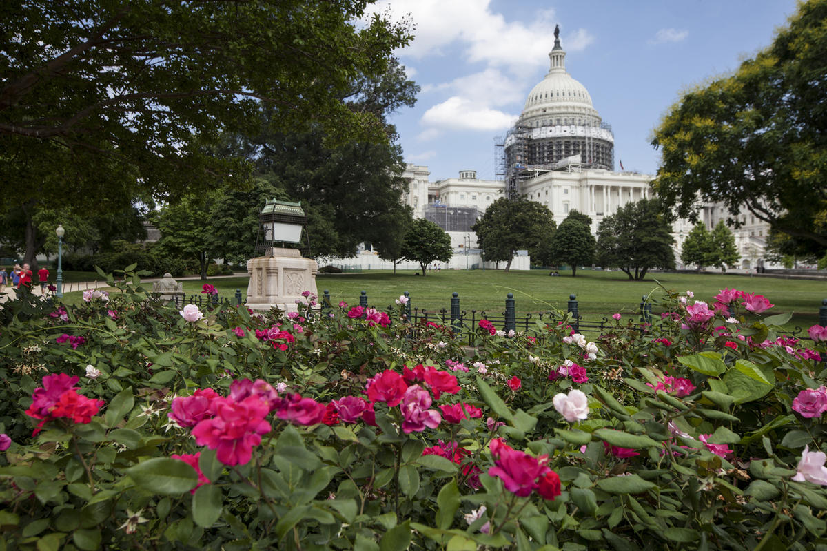FILE - This June 16, 2016, file photo, shows an exterior view of the Capitol Building in Washington. The House is slated to vote Sept. 9 on a bipartisan bill that would allow families of Sept. 11 victims to sue the government of Saudi Arabia, setting the
