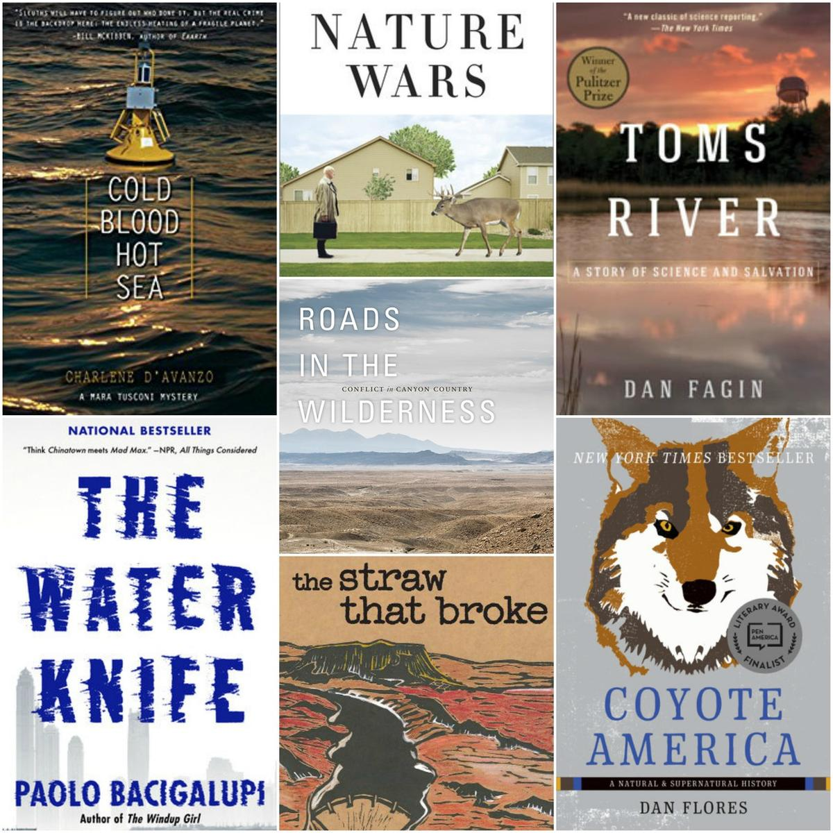 Cindy Lund, of the Insights to Conservation book club, recommends these seven novels.