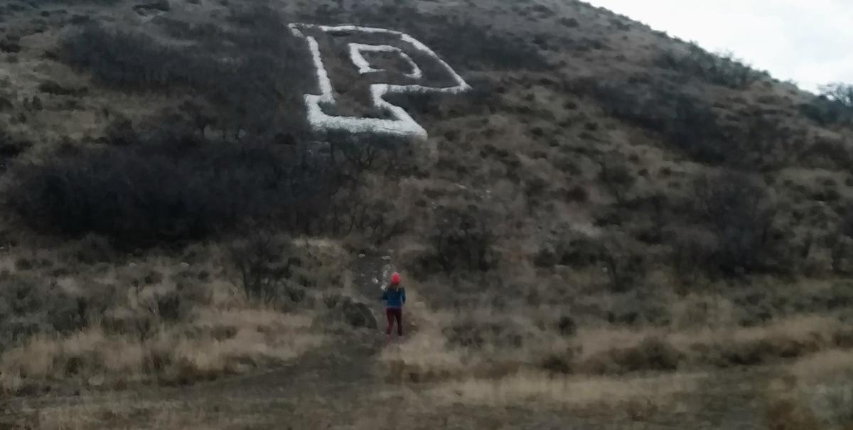 Arianne Brown runs in the foothills of her family's new hometown.