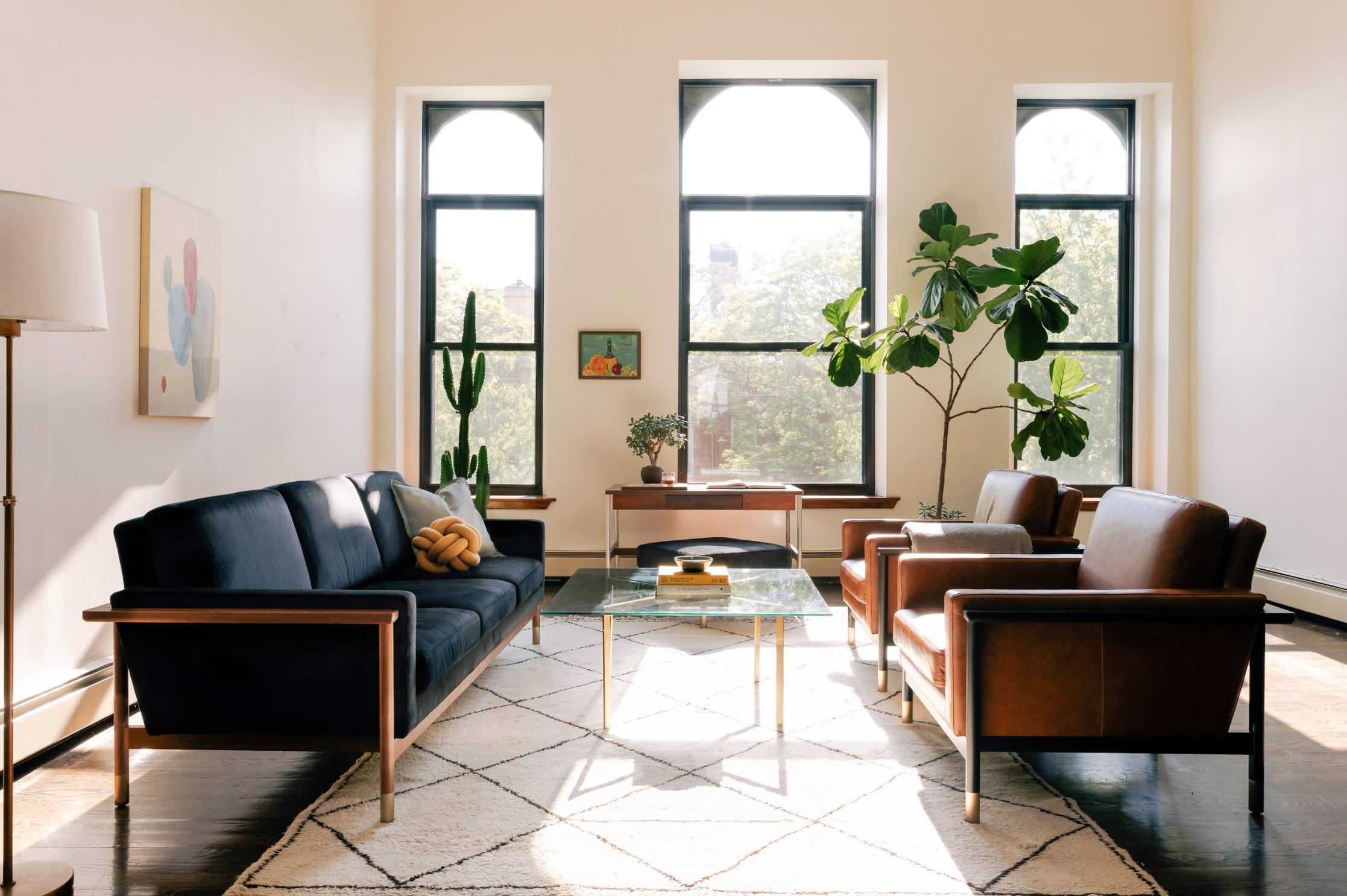 Two sofas in sunlit living room