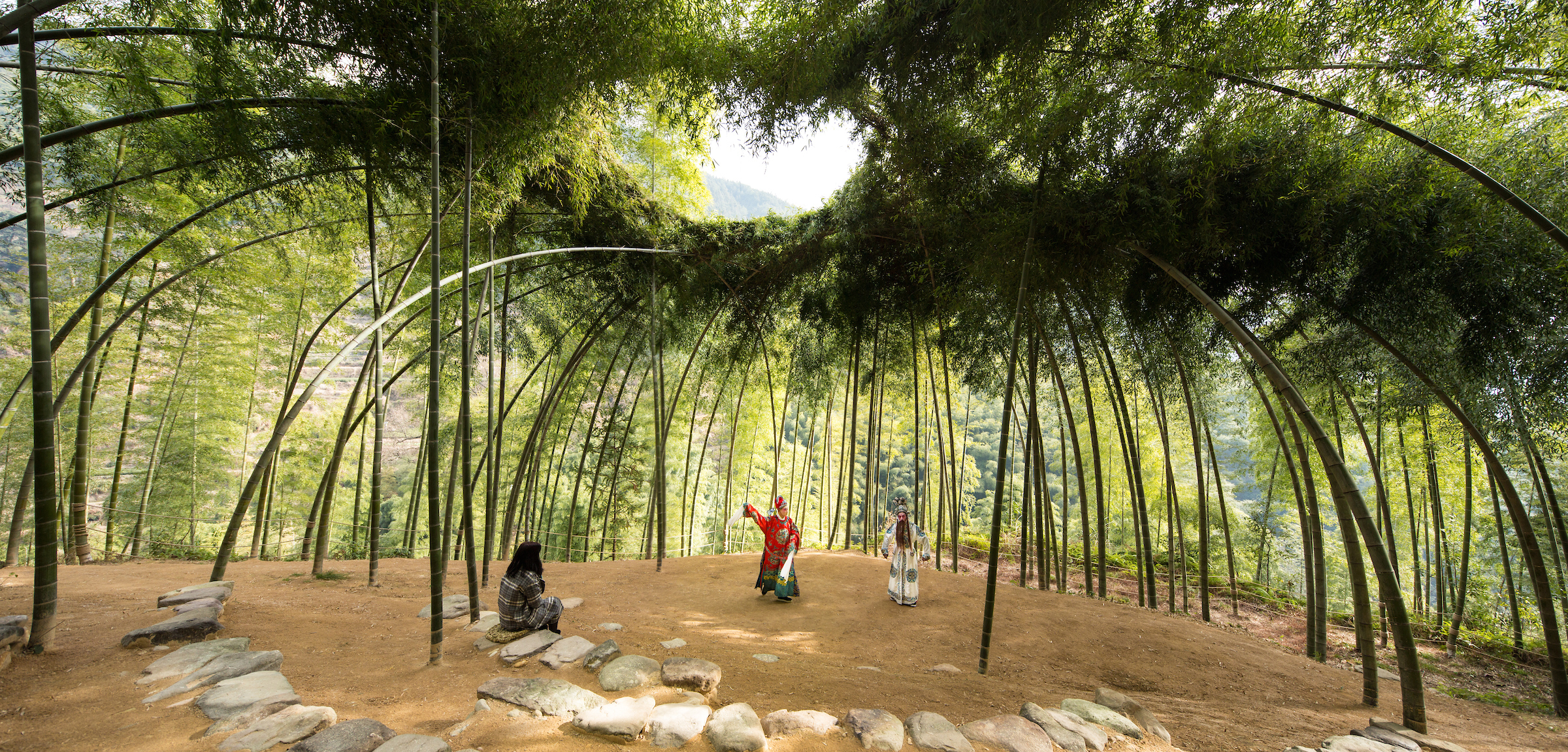 Tall, green bamboo plants are trained into a dome shape to create a theater