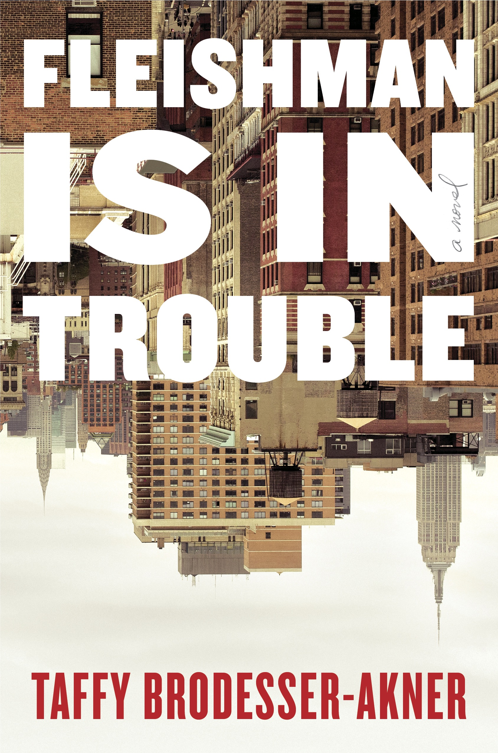 Fleishman Is in Trouble, a book by Taffy Brodesser-Akner.