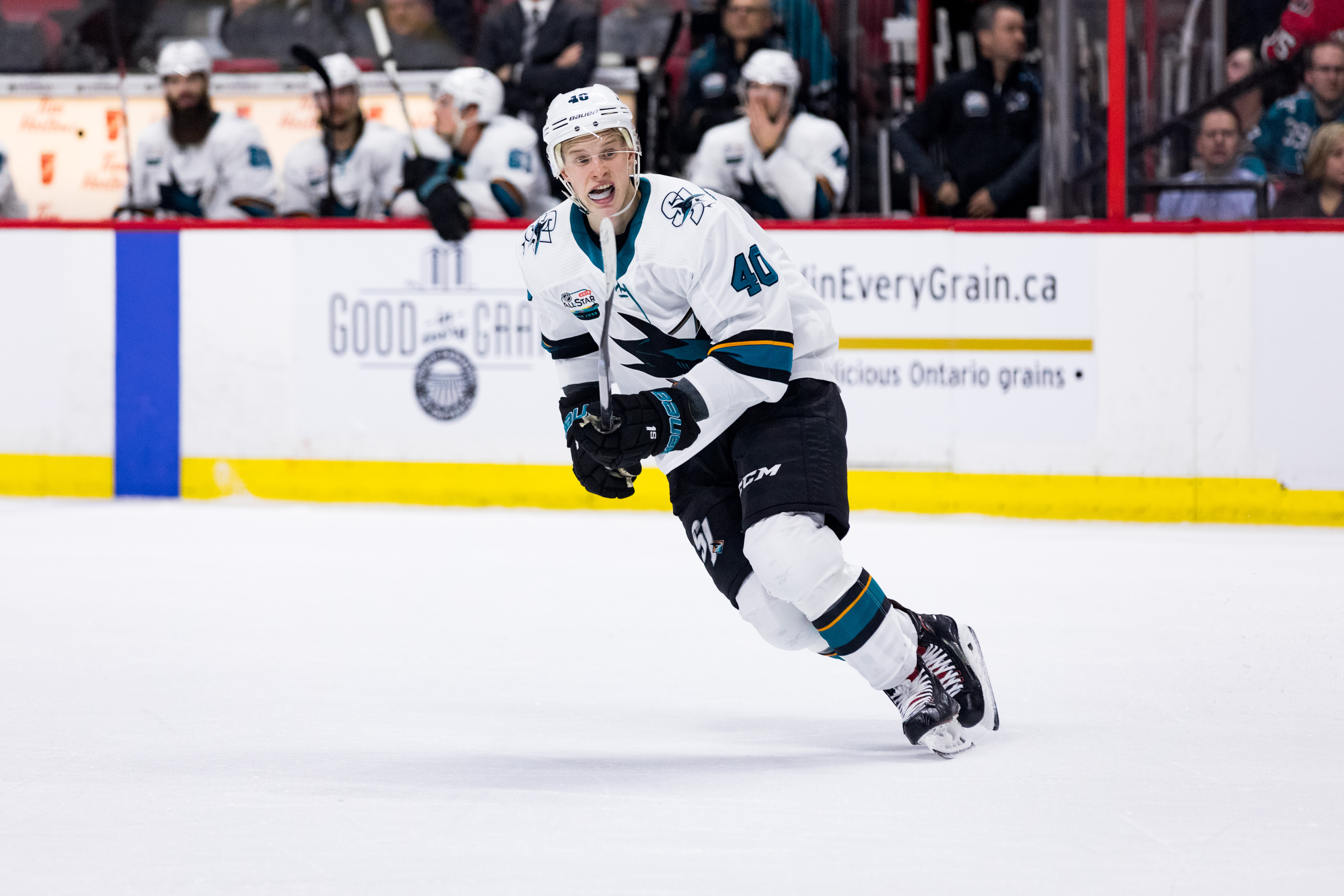 San Jose Sharks Center Antti Suomela (40) skates with the play during third period National Hockey League action between the San Jose Sharks and Ottawa Senators on December 1, 2018, at Canadian Tire Centre in Ottawa, ON, Canada.