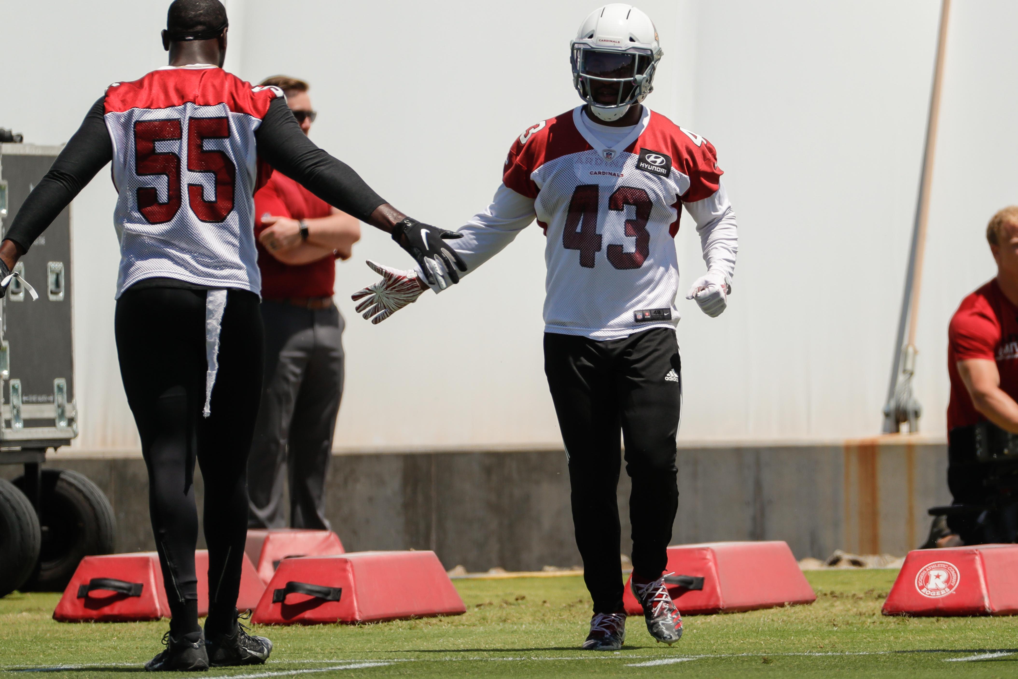 NFL: JUN 3 Cardinals OTA