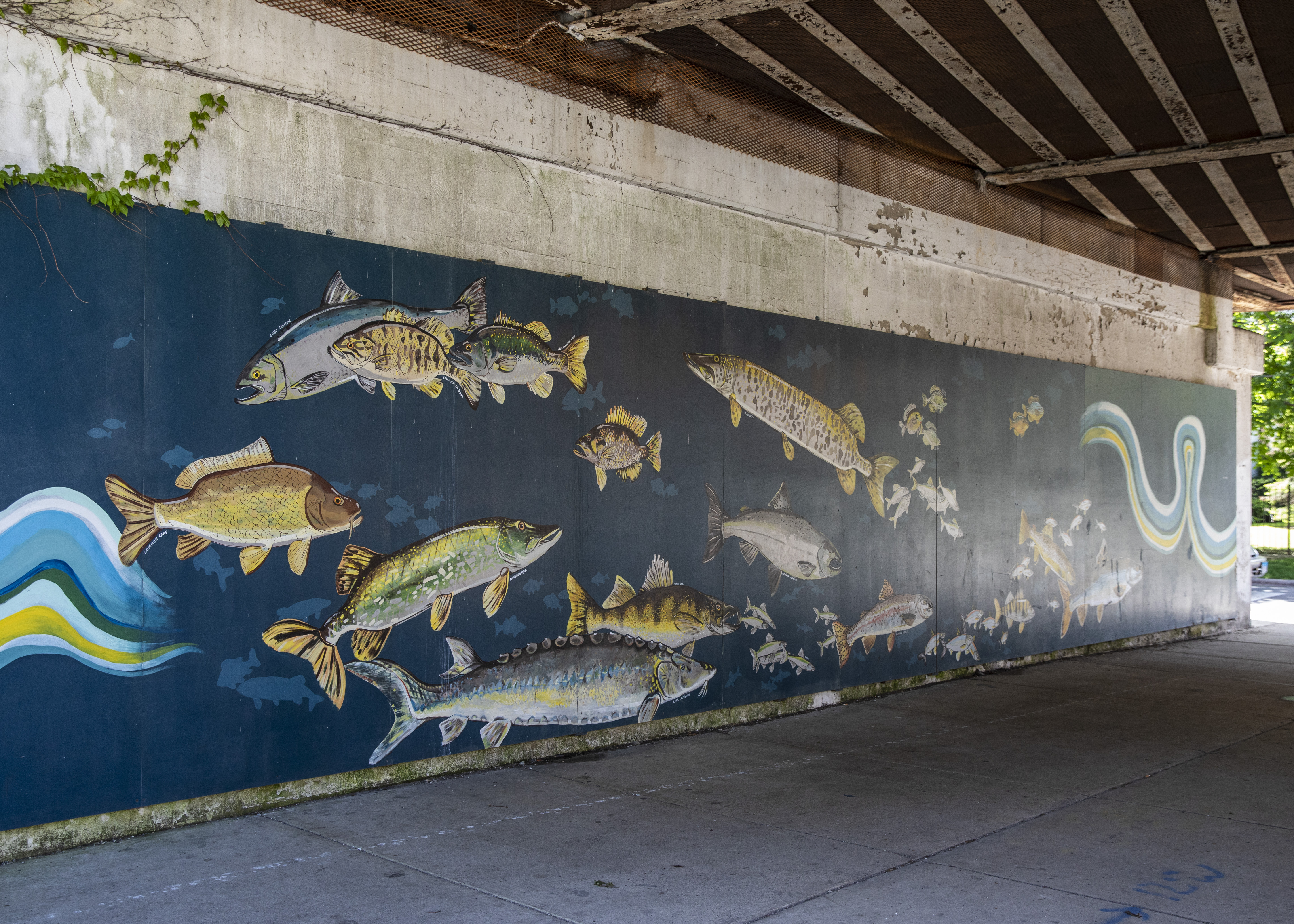 """Amanda Paulson's """"A Tribute to the Fish of Lake Michigan,"""" completed in 2011 at the L viaduct at Pratt Boulevard and Glenwood Avenue."""