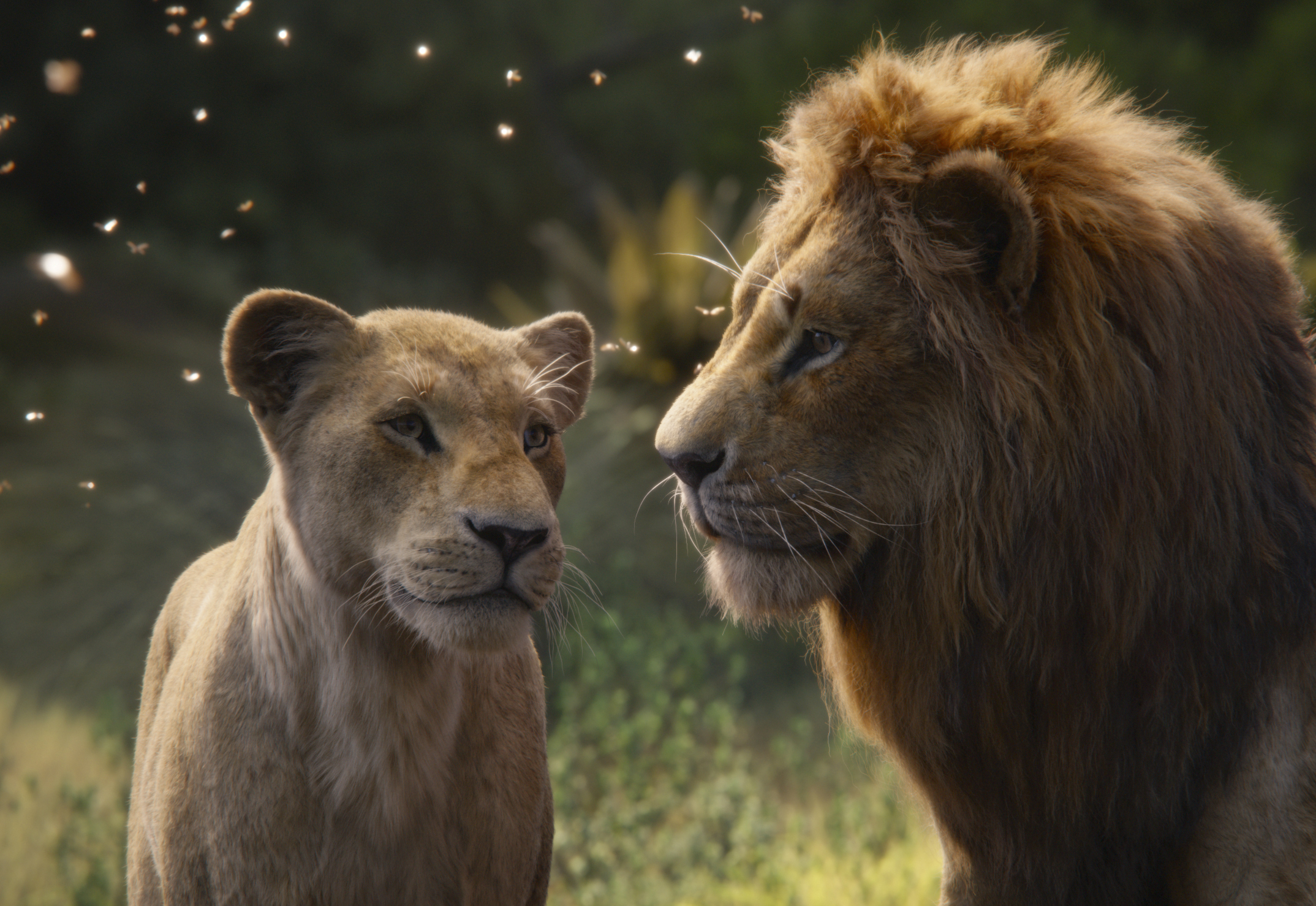 """Nala, voiced by Beyoncé Knowles-Carter (left) and Simba, voiced by Donald Glover in a scene from """"The Lion King."""""""