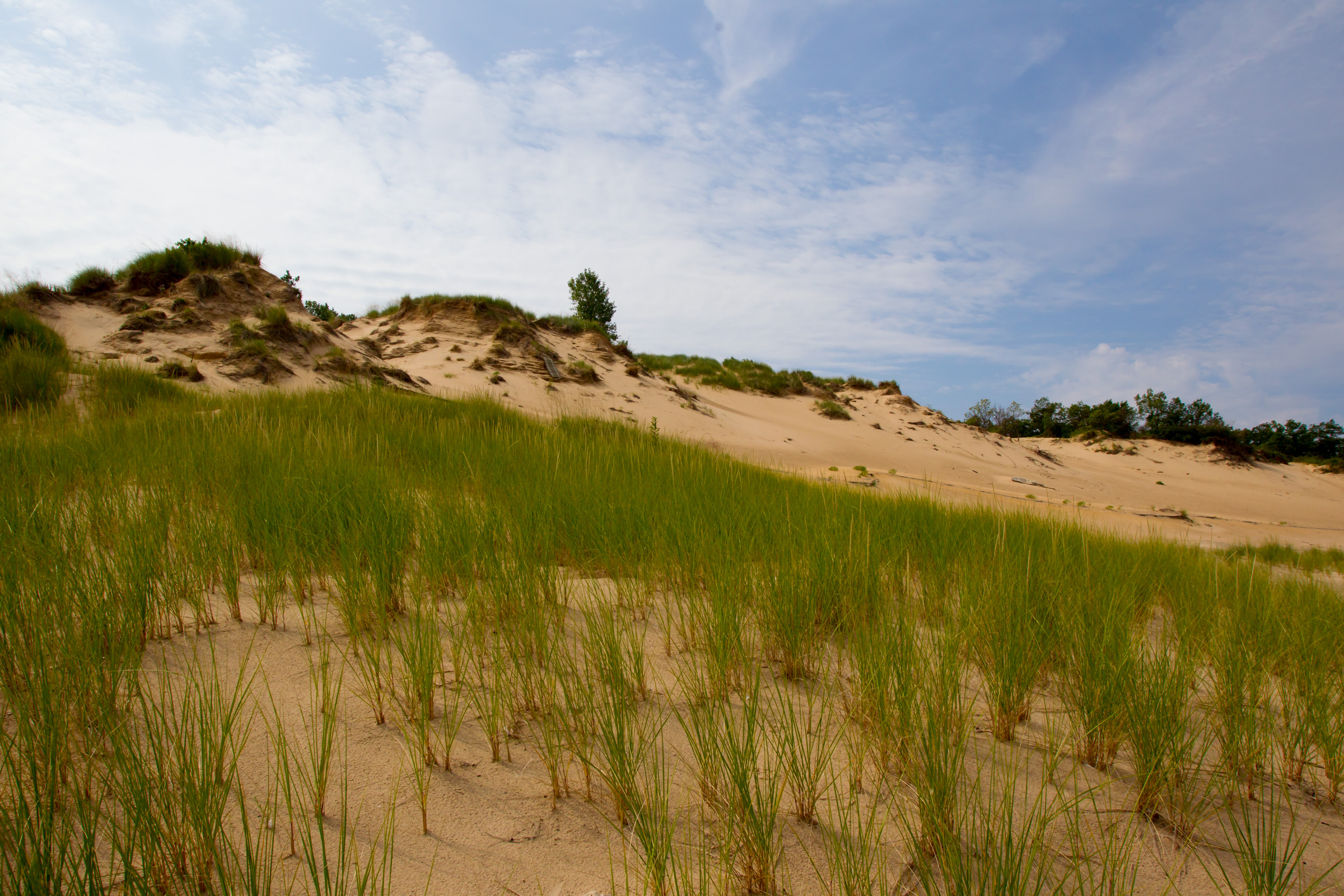 An overall view of the sand dunes at Mt. Baldy at the Indiana Dunes National Lakeshore in Michigan City, Indiana.