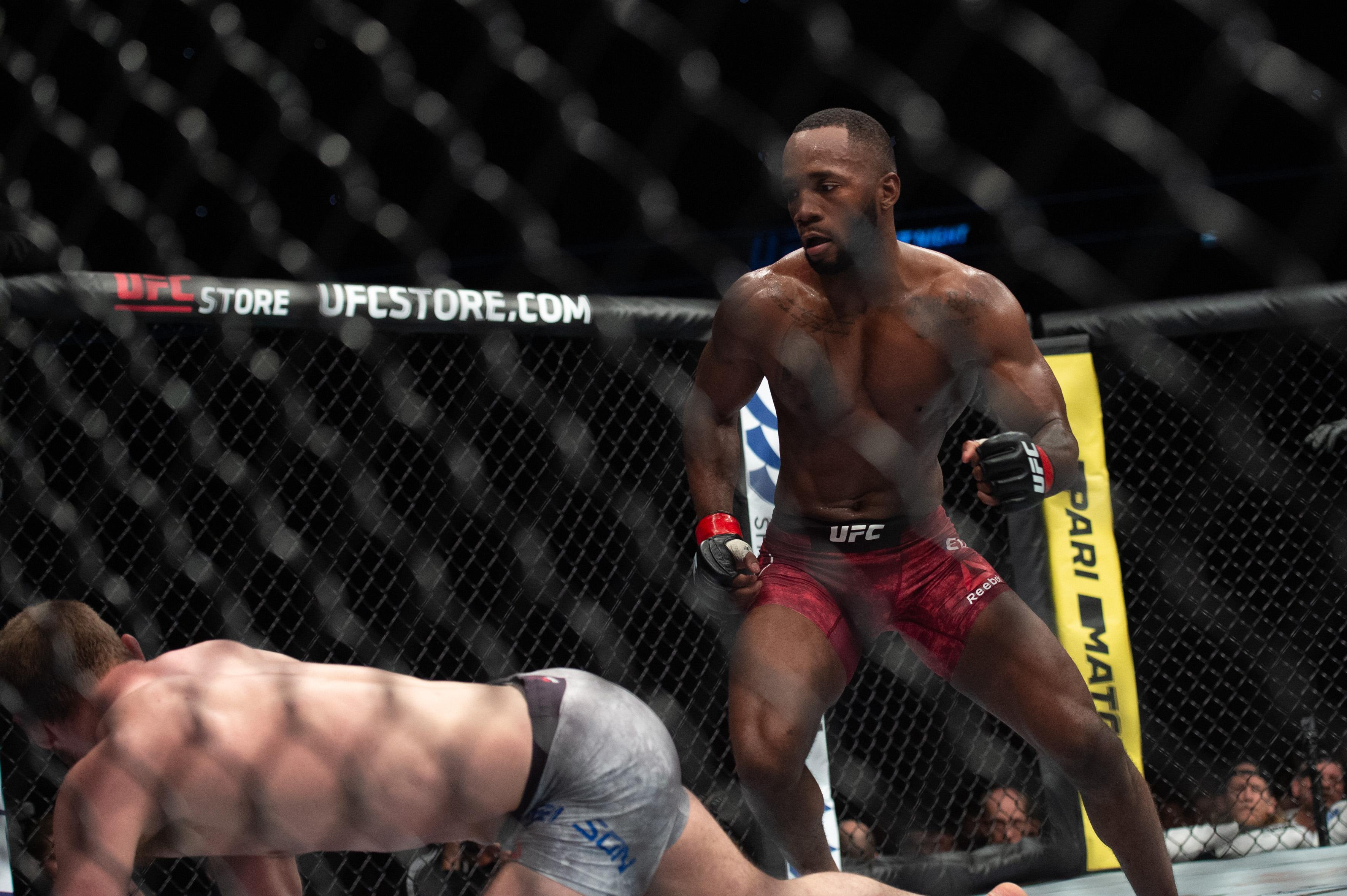 UFC Predictions - MMAmania com