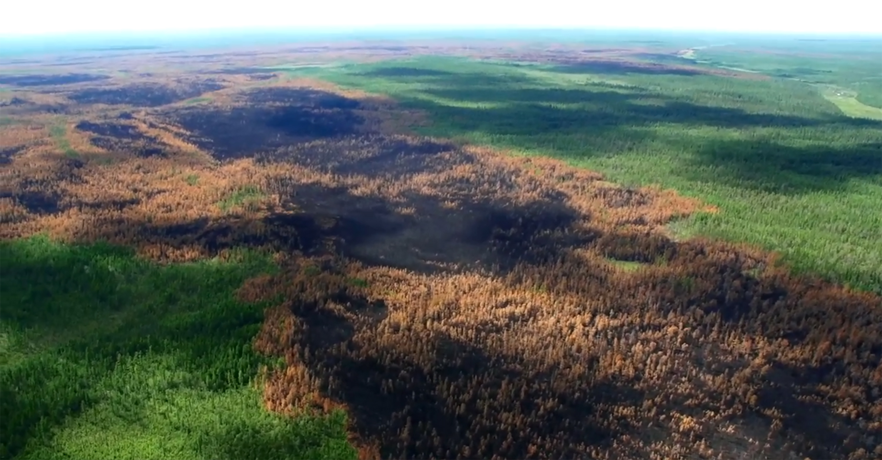 An aerial view of forests burned in wildfires; over 1 million hectares of woodland have been hit by wildfires in Russia's Krasnoyarsk Territory.
