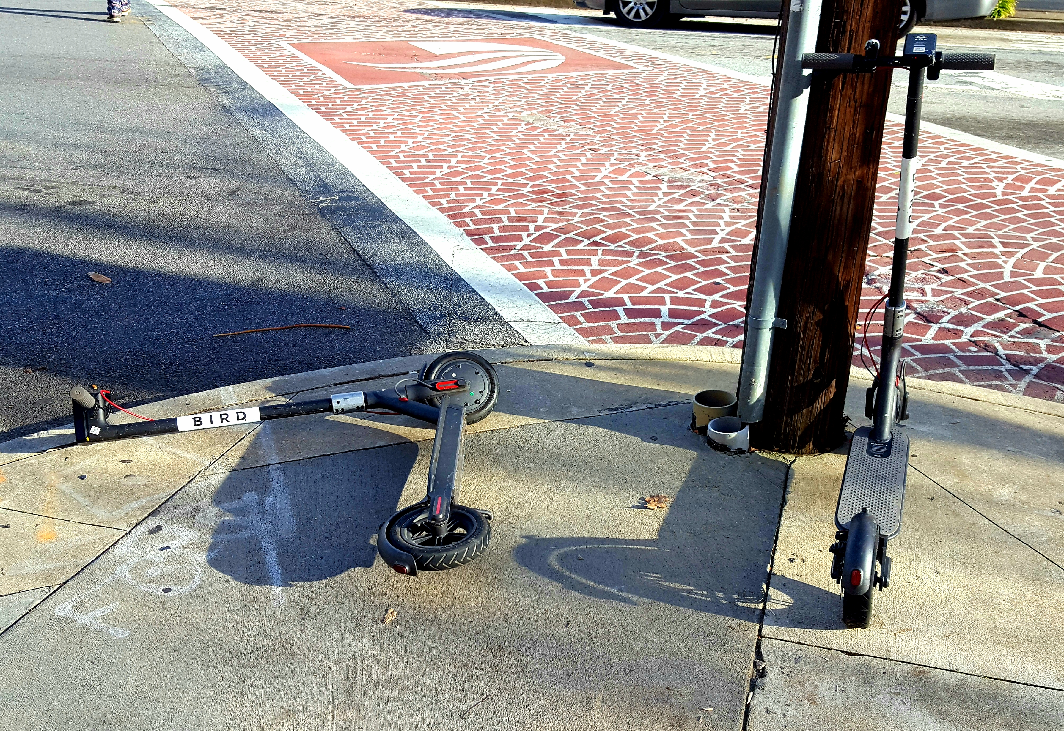 A picture of two Bird e-scooters parked on a sidewalk, one knocked over on its side.