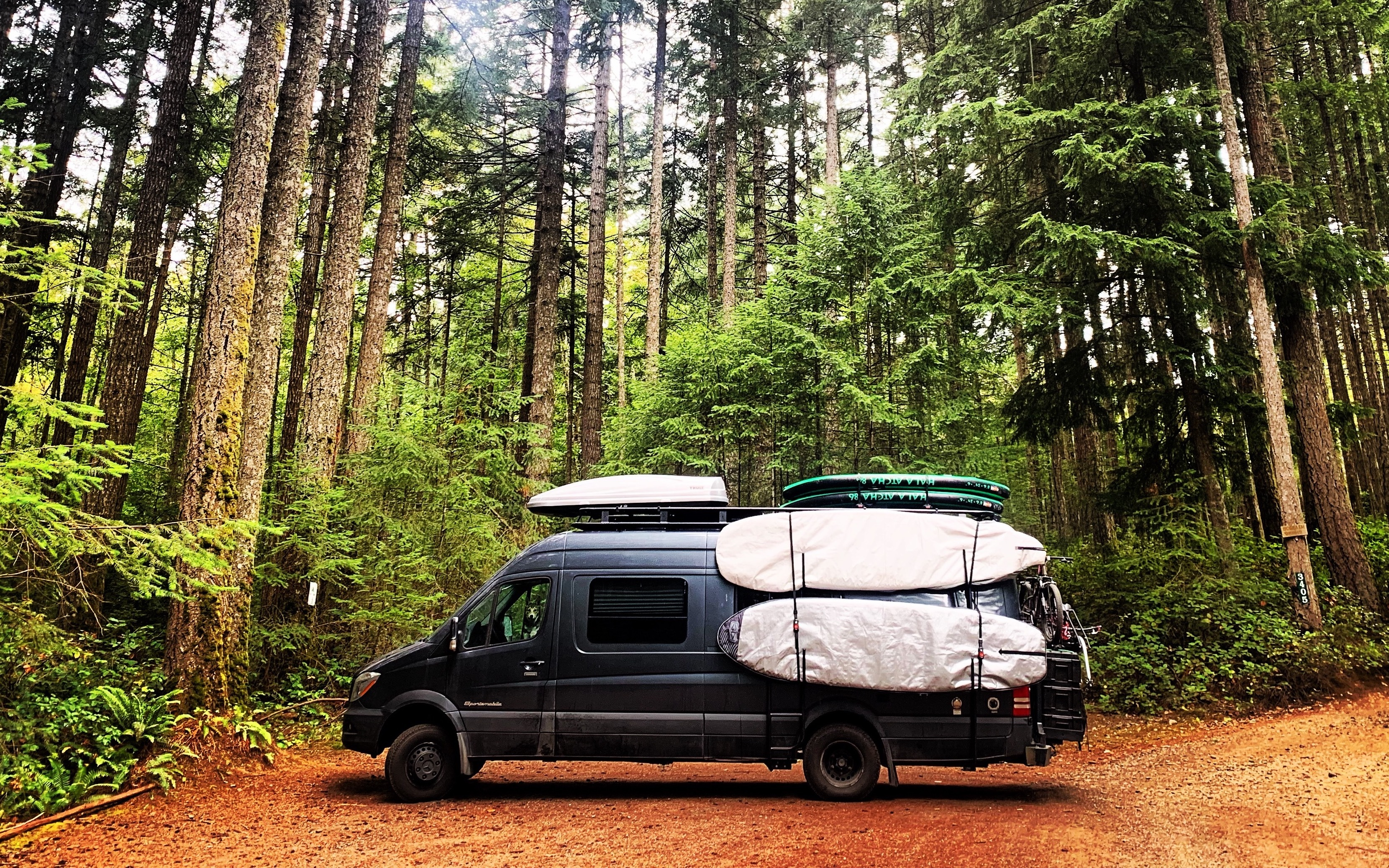 A Mercedes-Benz Sprinter van with surfboards on the side sits in an old-growth forest in Vancouver Island, British Columbia.