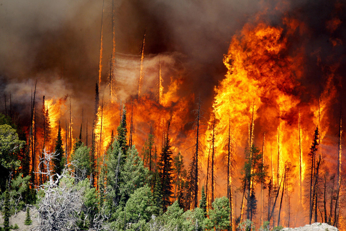 FILE - The Brian Head Fire, pictured Friday, June 23, 2017, continues to grow and has burned more than 27,700 acres. At least 13 homes and eight out buildings have been destroyed by the fire