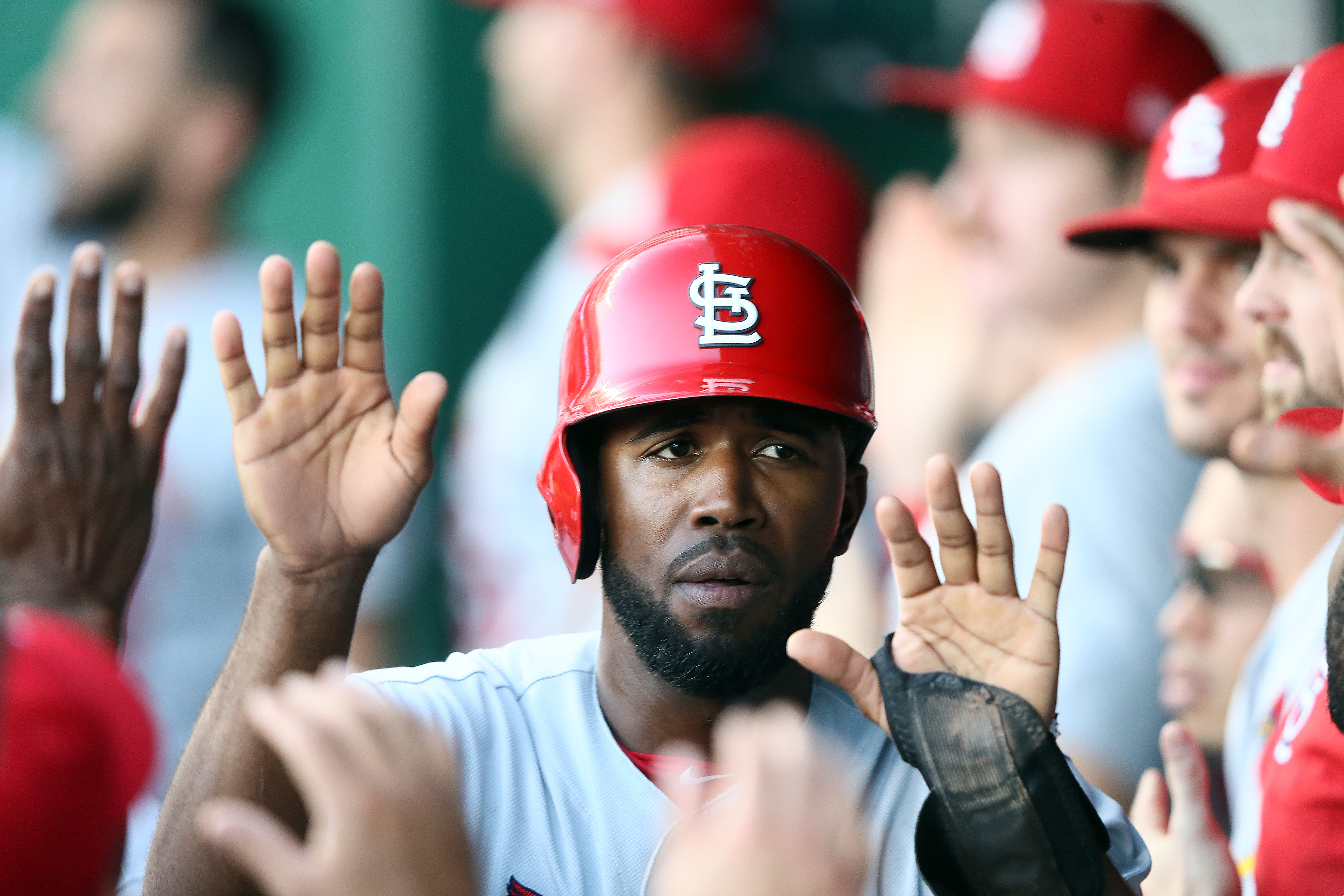 Dexter Fowler #25 of the St. Louis Cardinals is congratulated by teammates in the dugout after scoring during the 1st inning of the game against the Kansas City Royals at Kauffman Stadium on August 13, 2019 in Kansas City, Missouri.
