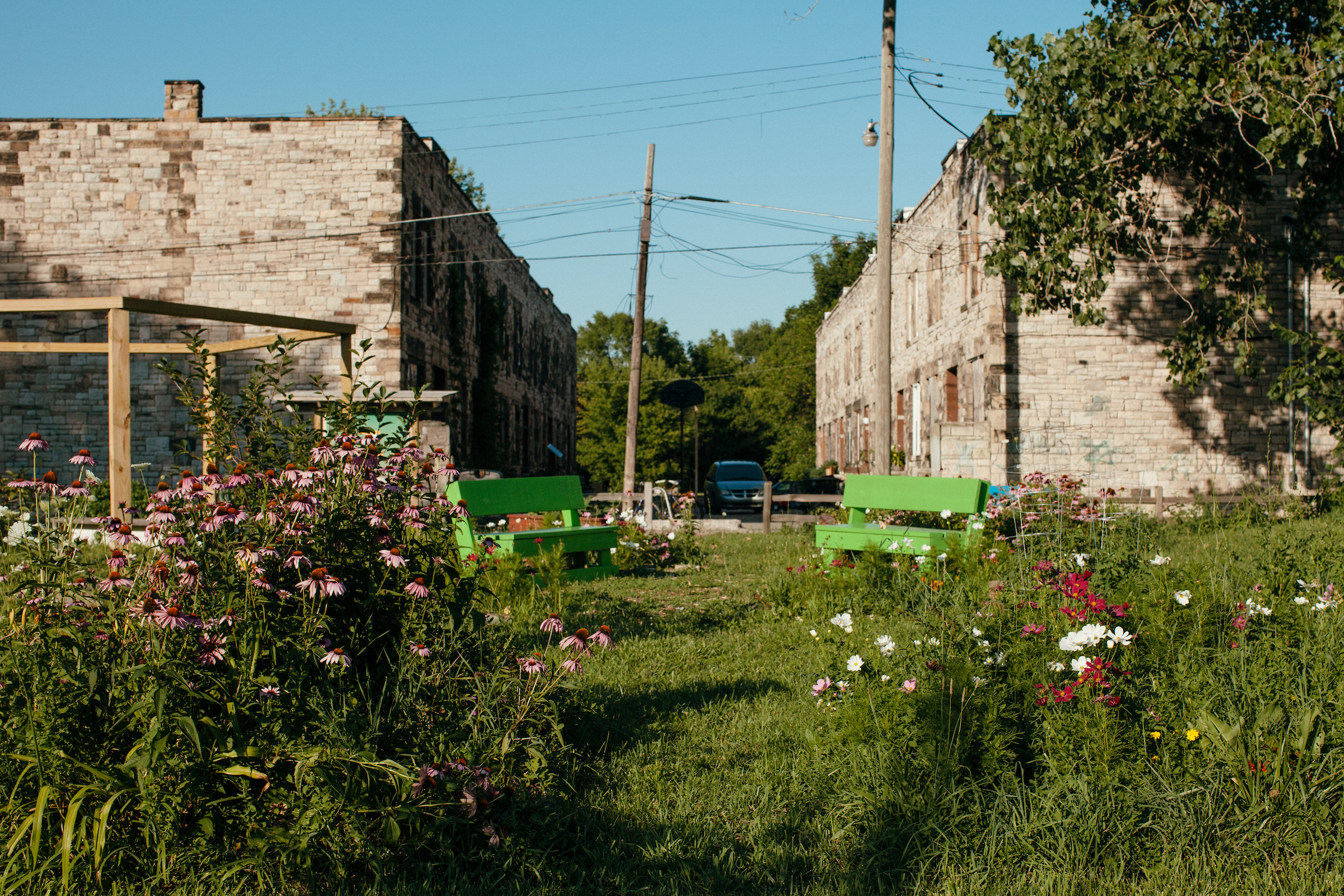 Weeds and flowers grow in front of two parallel brick row houses