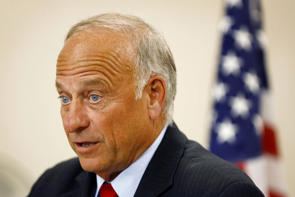 U.S. Rep. Steve King, R-Iowa speaking at a town hall meeting