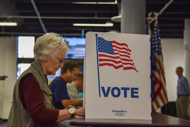Virginia Primary Election
