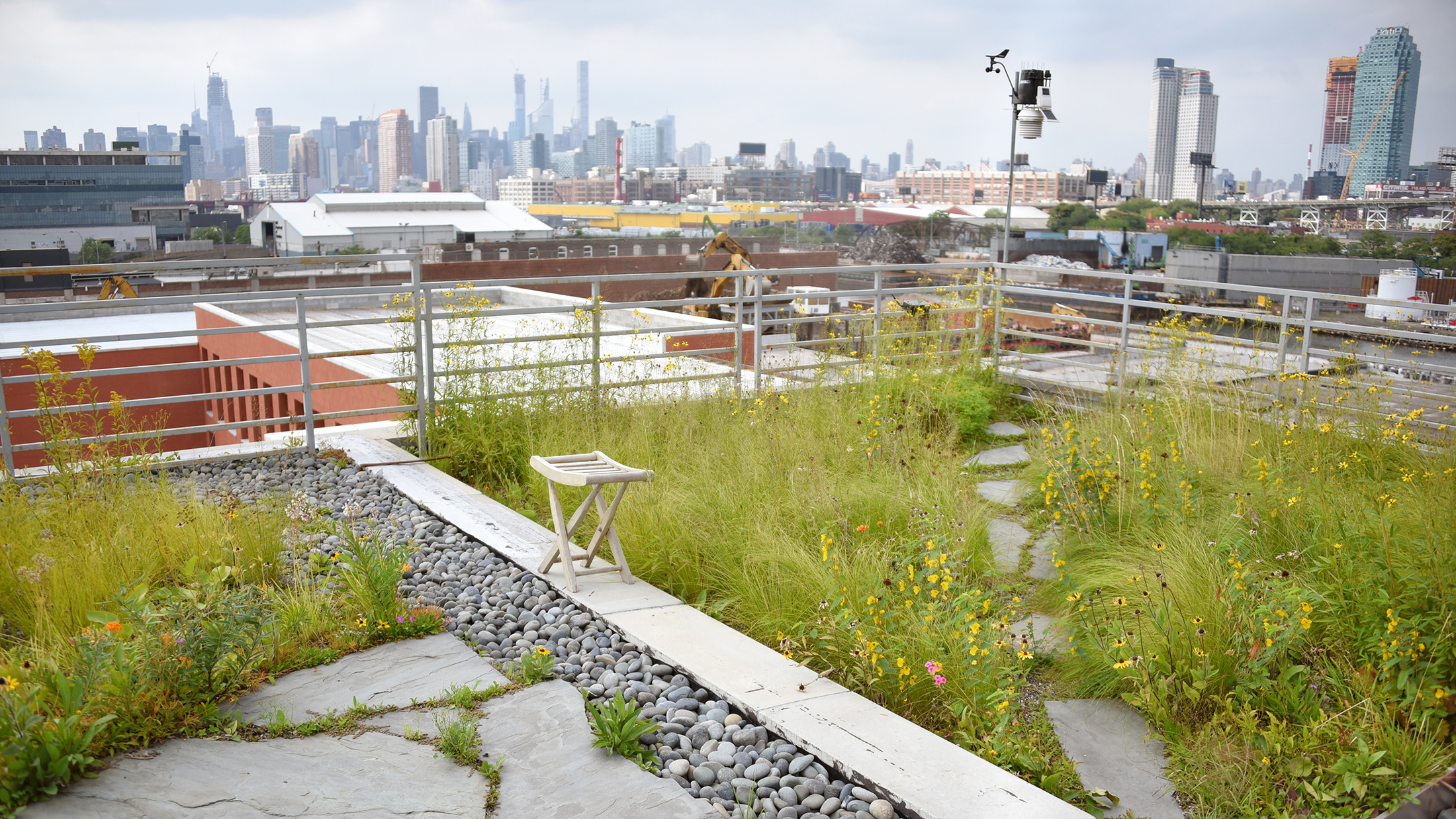 A green roof with a stone pathway, flowers, and other planting.