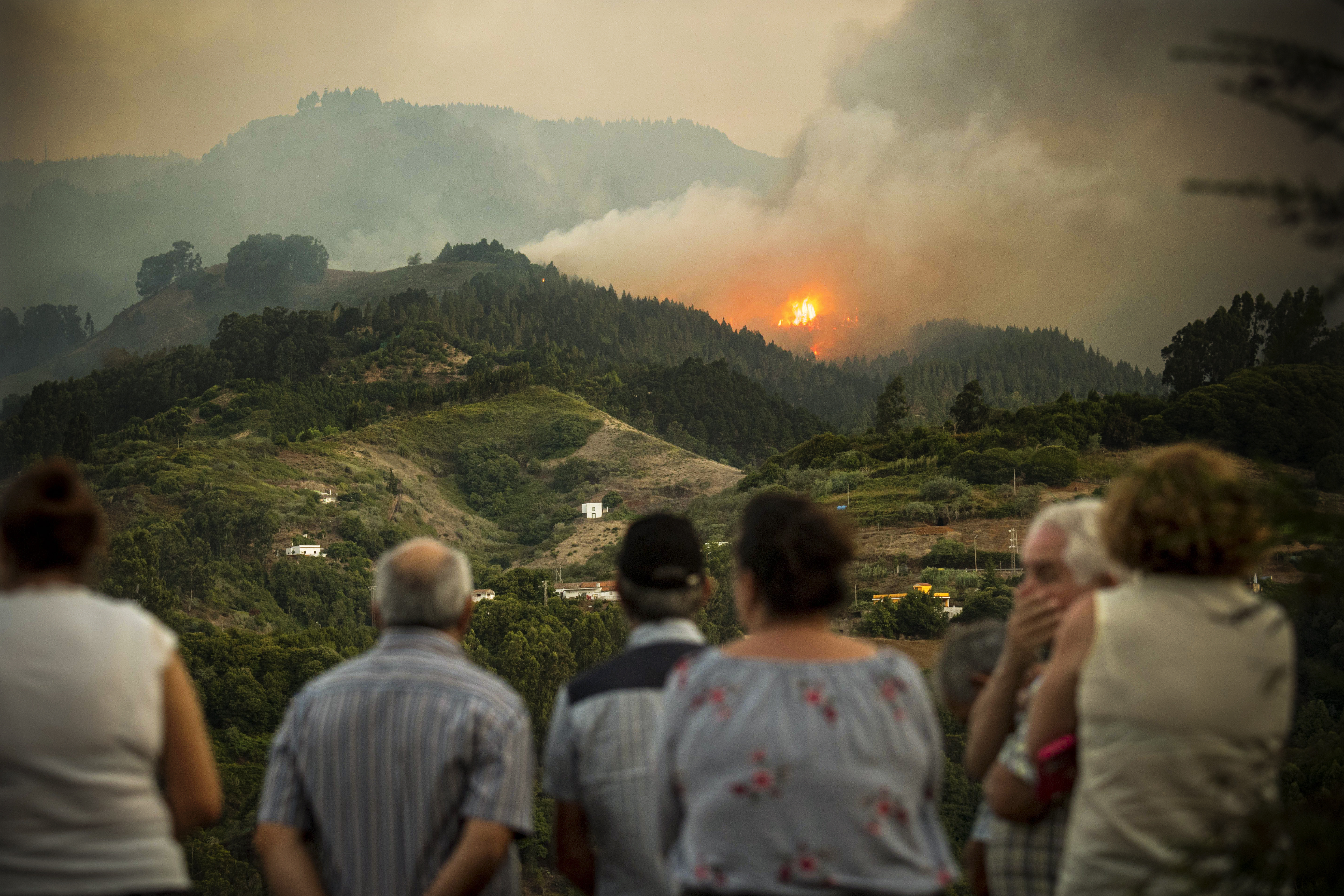 Photos: major wildfires have ignited across Europe, Asia, and Latin America