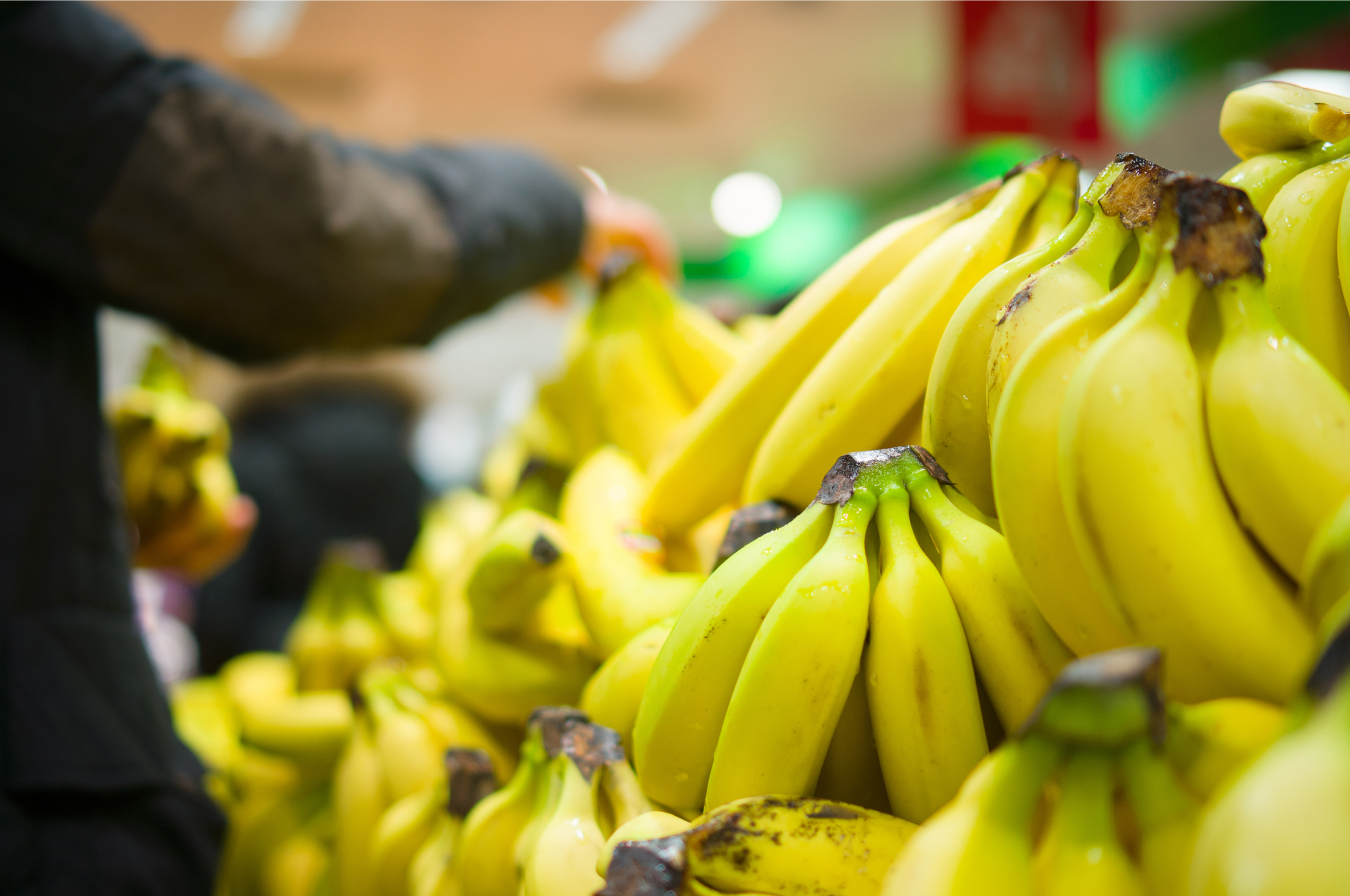 Someone Left a Whole Lot of Cocaine in Safeway Banana Shipments