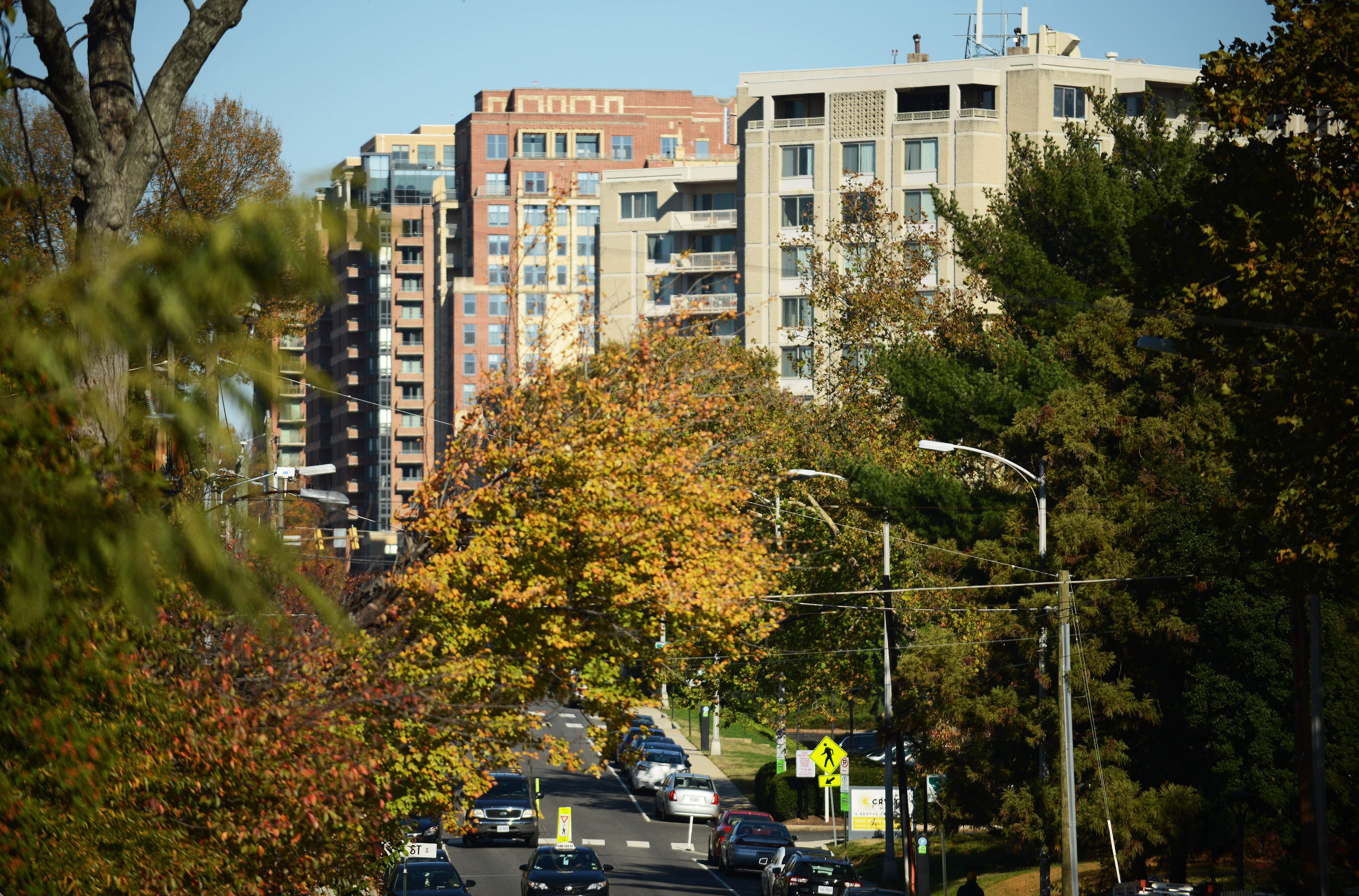 A line of apartment buildings in Arlington, Virginia, adjacent to trees and streetlights.
