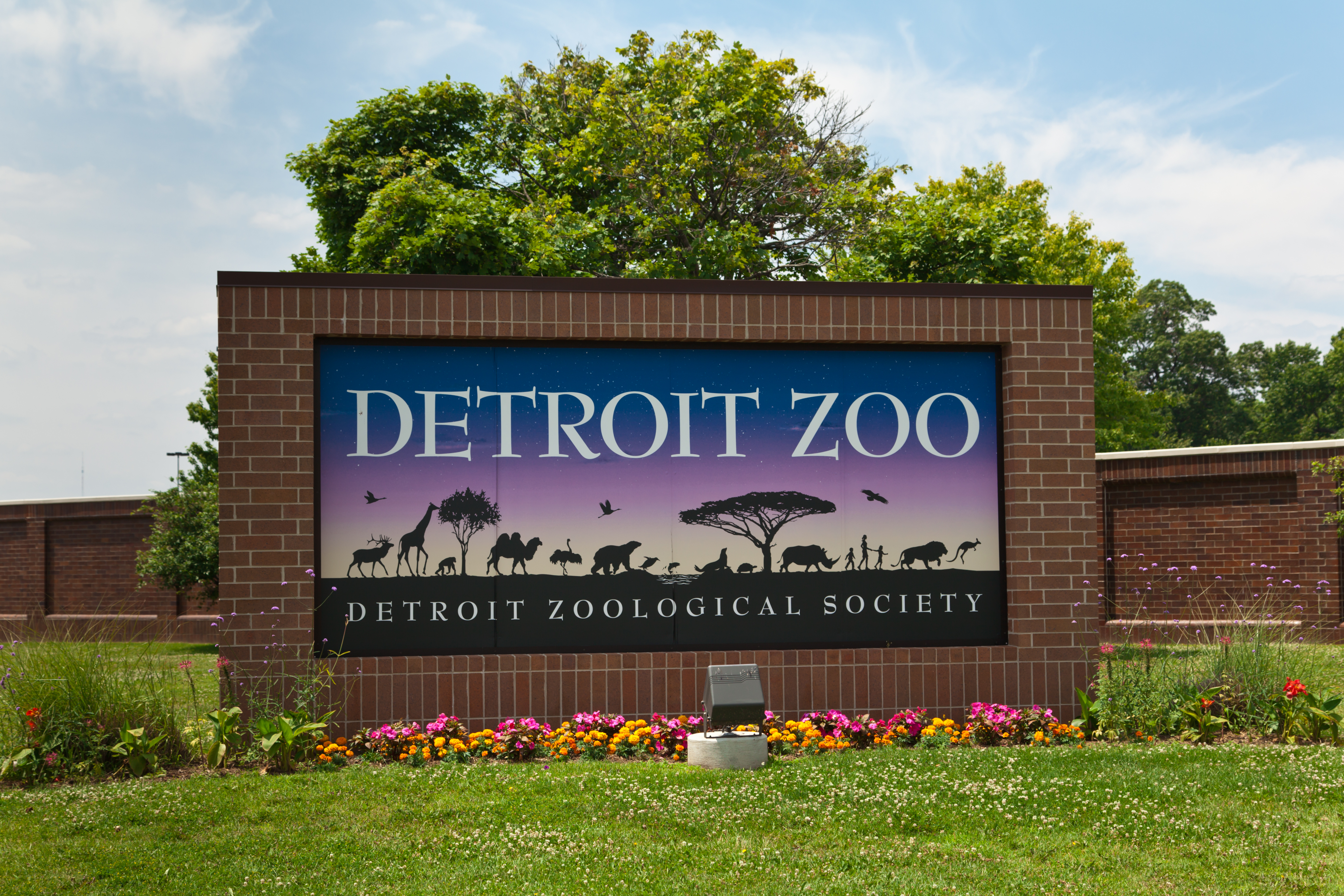"A sign with a brick outline in a well-cut field of grass with some flowers that reads ""DETROIT ZOO."""