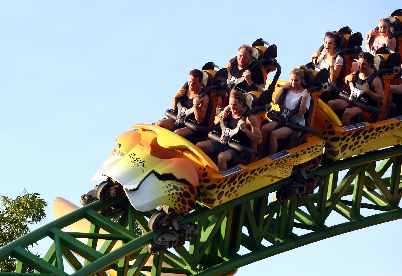 Tom Daley Visits Busch Gardens With Boyfriend Dustin Lance Black And Friends