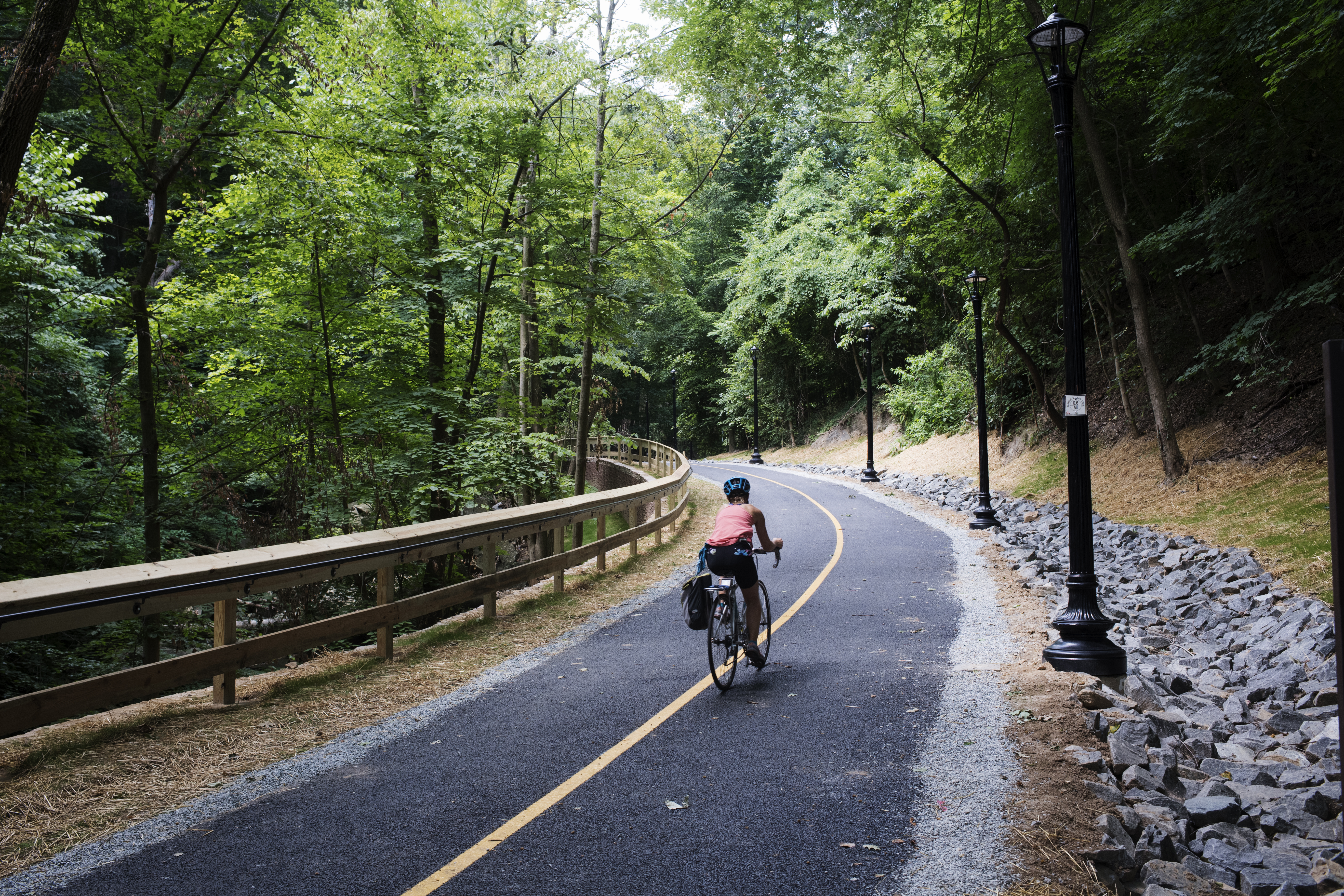 A cyclist uses a multiuse trail in the middle of a lush park. The trail is lined with streetlights.