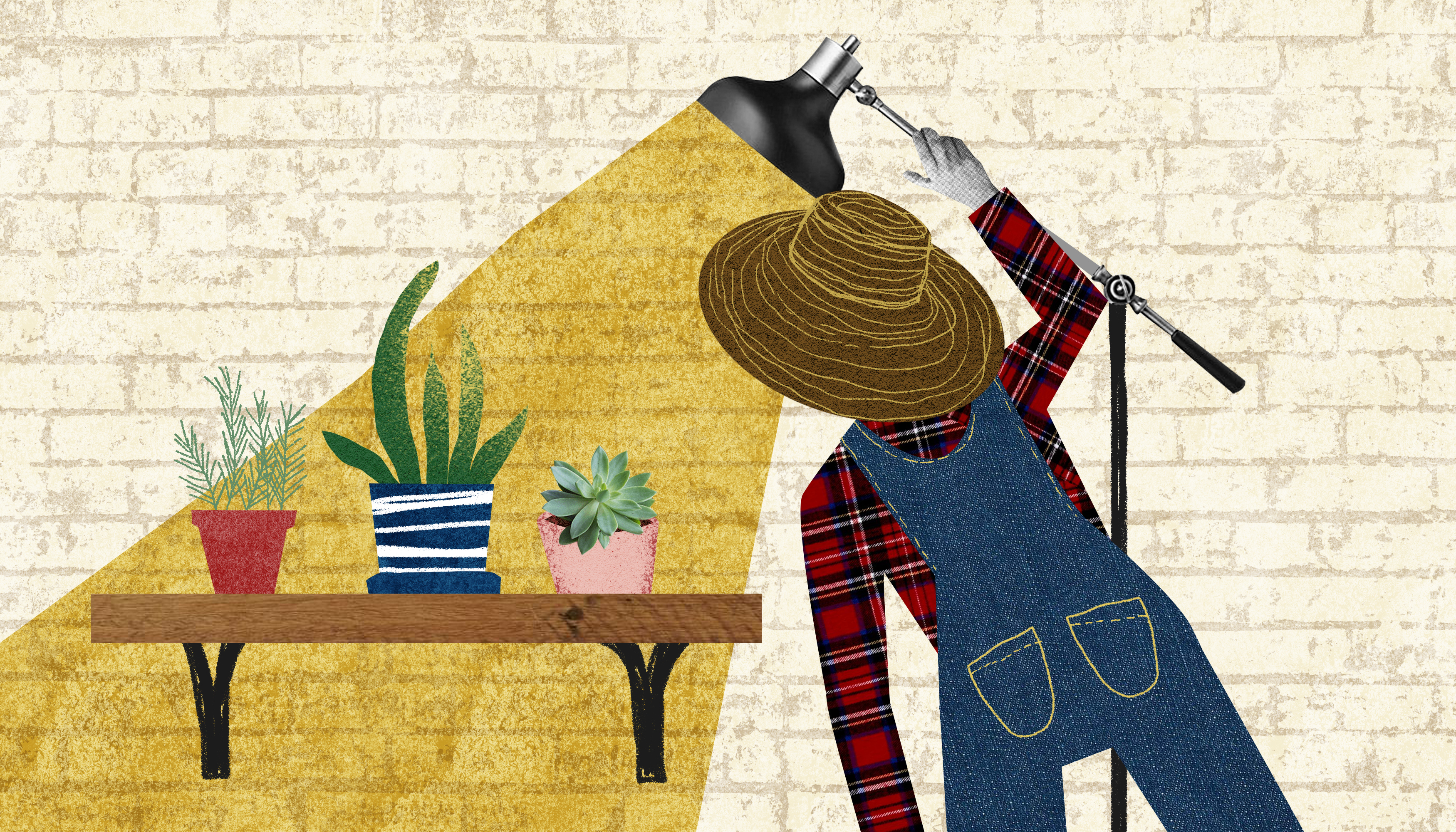 A person in overalls and a plaid shirt shines a line on a trio of small houseplants on a wooden shelf. Illustration.